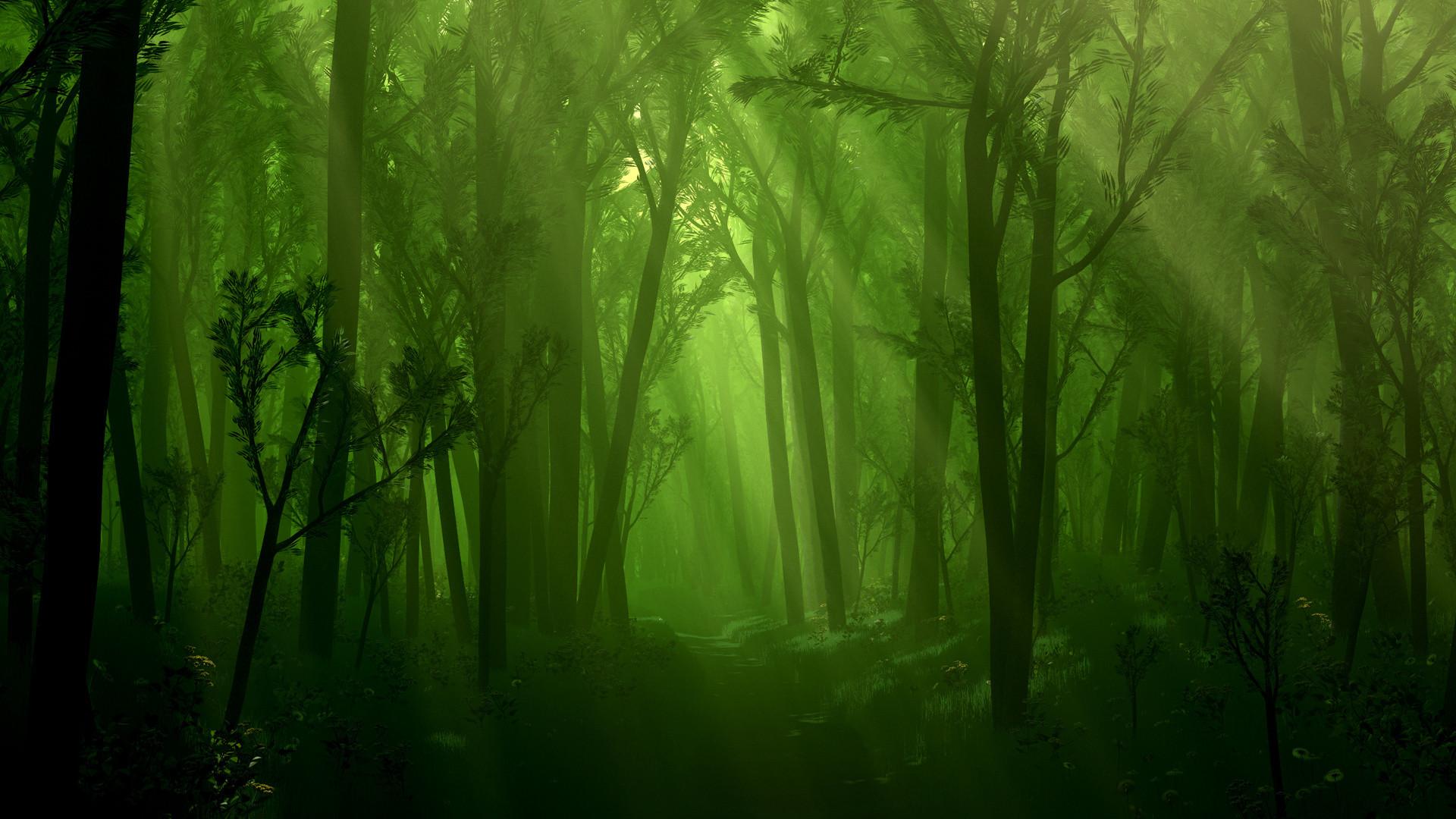 Fantasy Forest Backgrounds   Fantasy – Forest Wallpaper