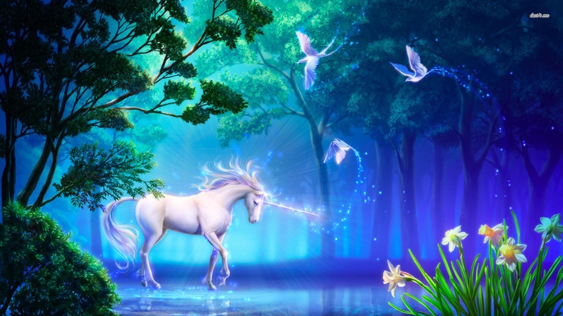Unicorn in the forest Fantasy HD desktop wallpaper, Bird wallpaper, Forest  wallpaper, Unicorn wallpaper – Fantasy no.