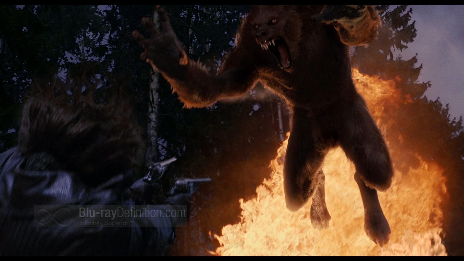 Van Helsing Werewolf Wallpapers