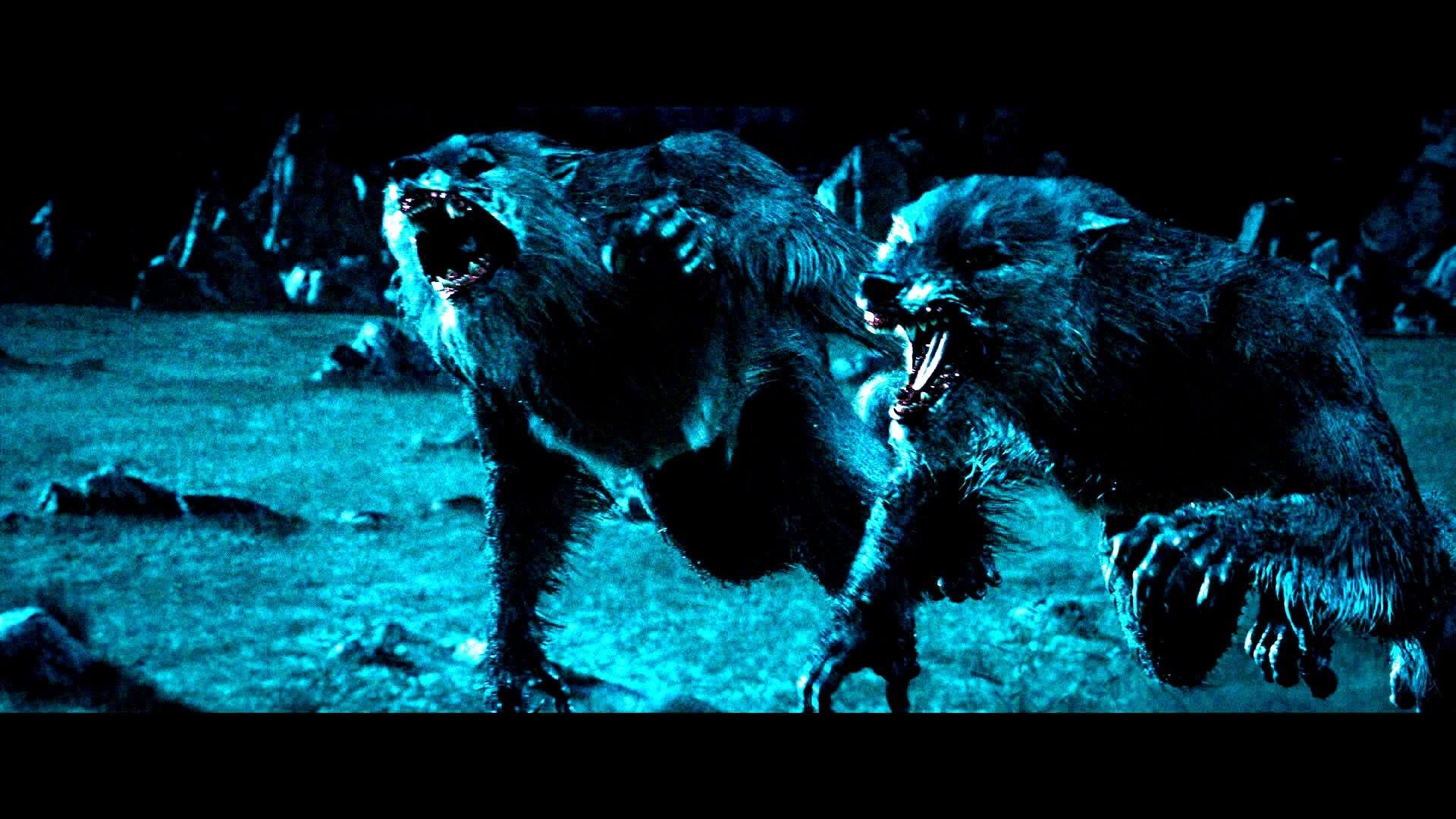 UNDERWORLD action fantasy thriller dark lycan werewolf ji wallpaper