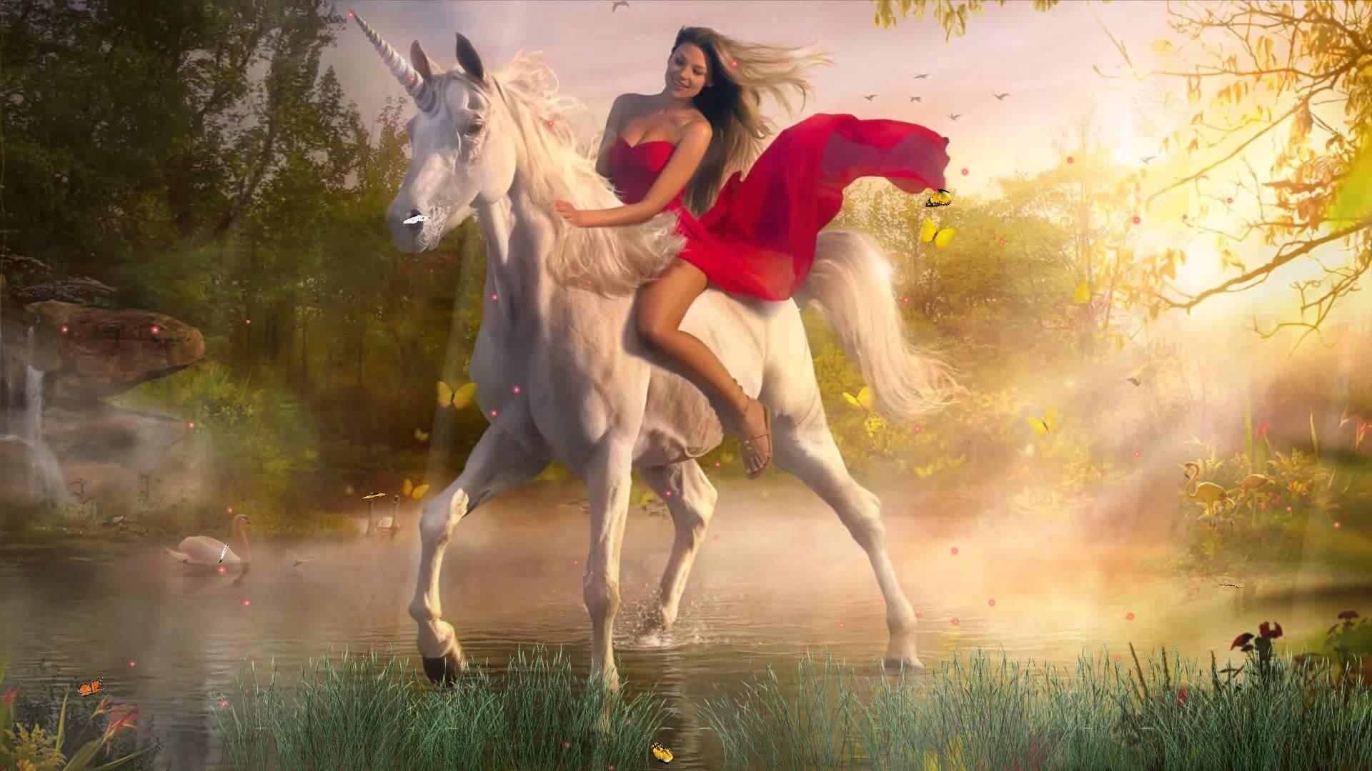 Magic Unicorns Animated Wallpaper https://www.desktopanimated.com