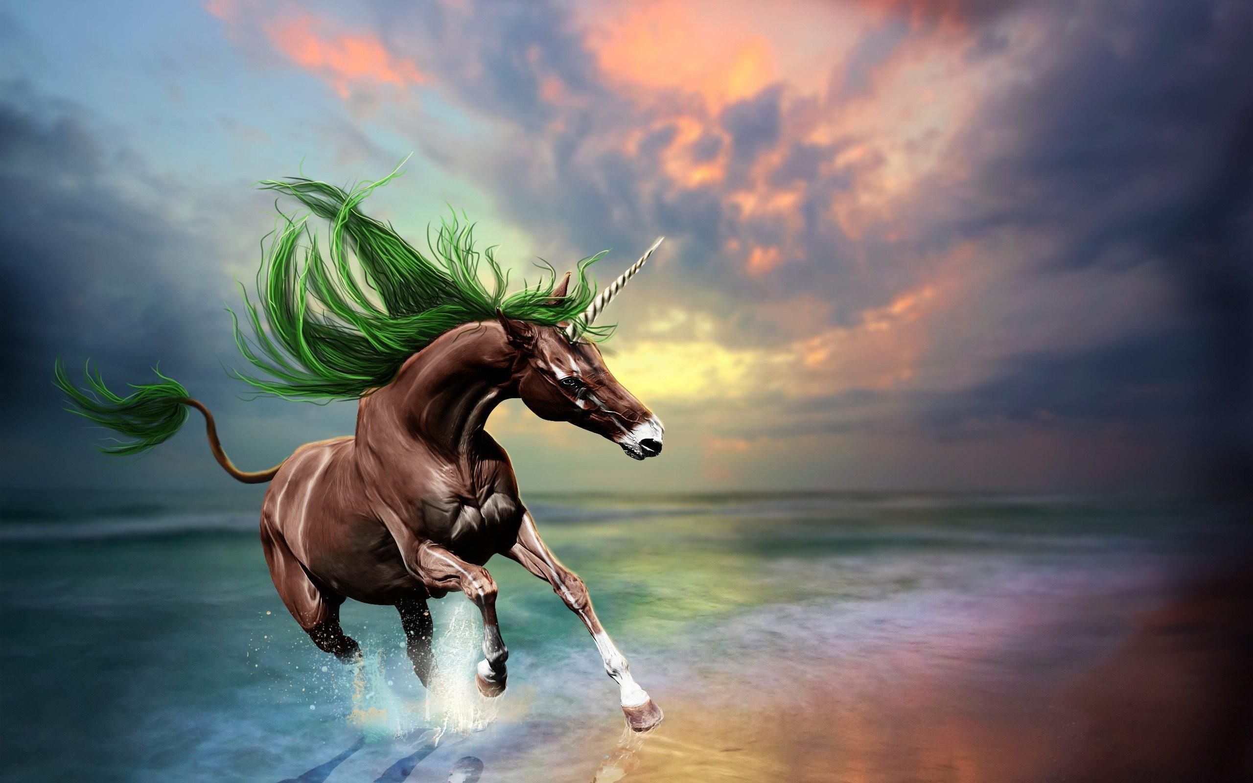 Live 738952. SHARE. TAGS: Unicorn Animated Background Animation Animals