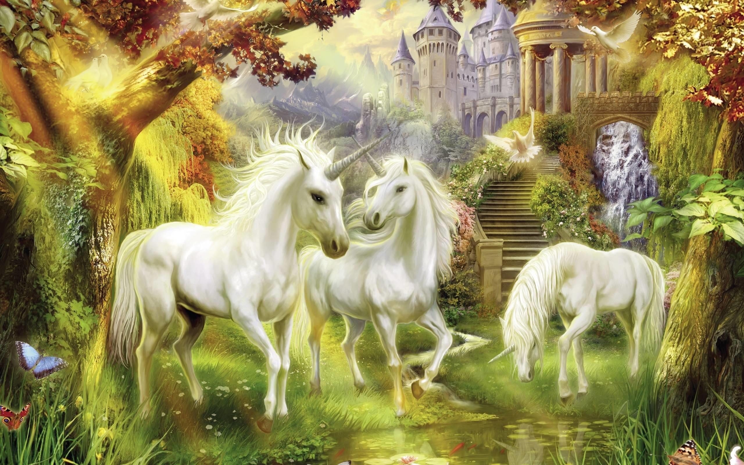 Unicorn Images
