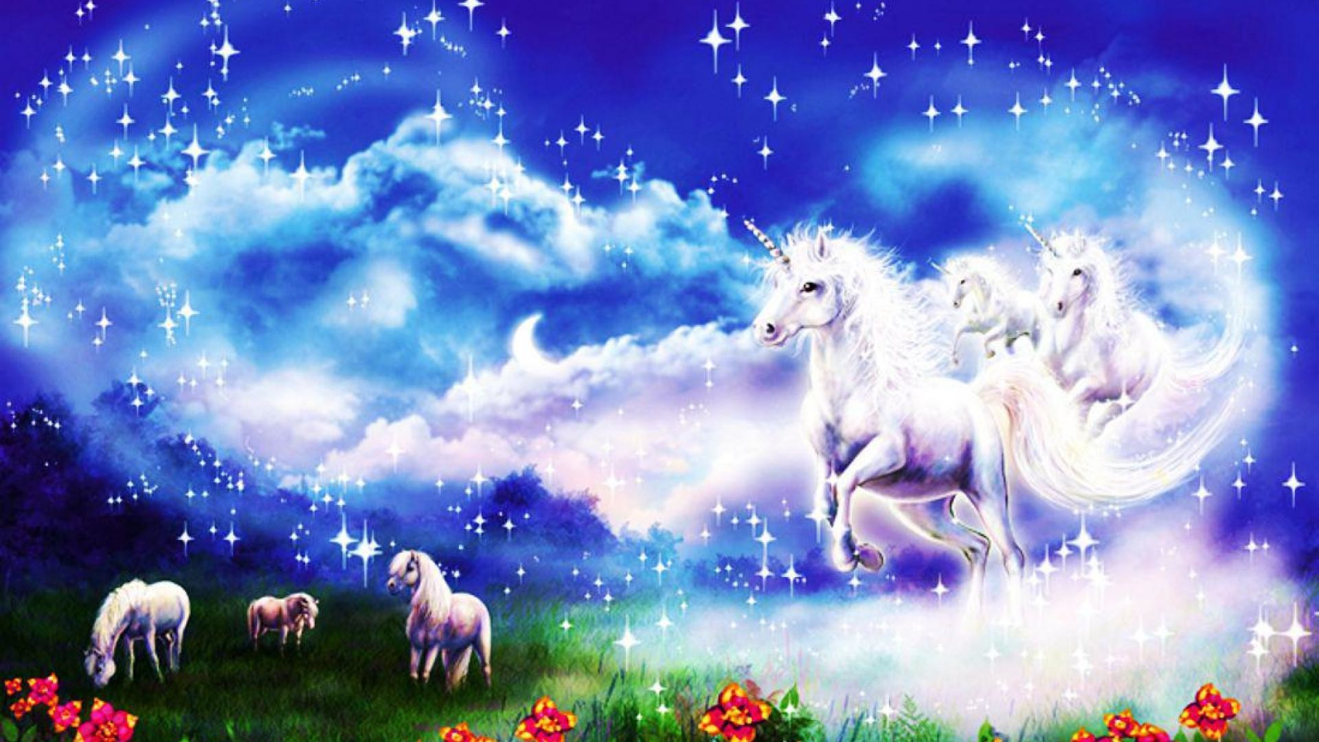 Spirit of unicorn – (#141404) – High Quality and Resolution Wallpapers .