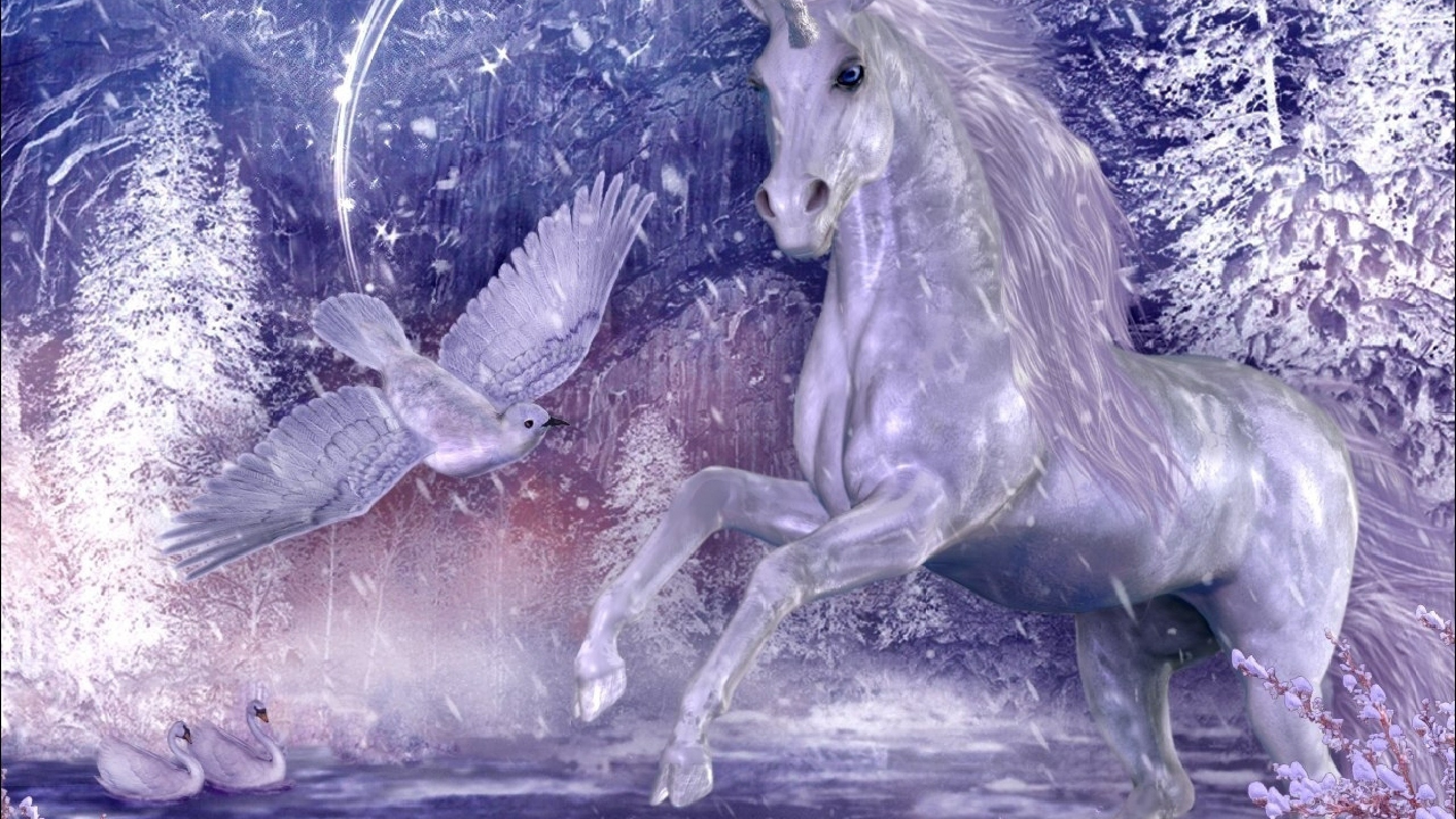HD Unicorn Wallpaper and Desktop Background Back Wallpapers