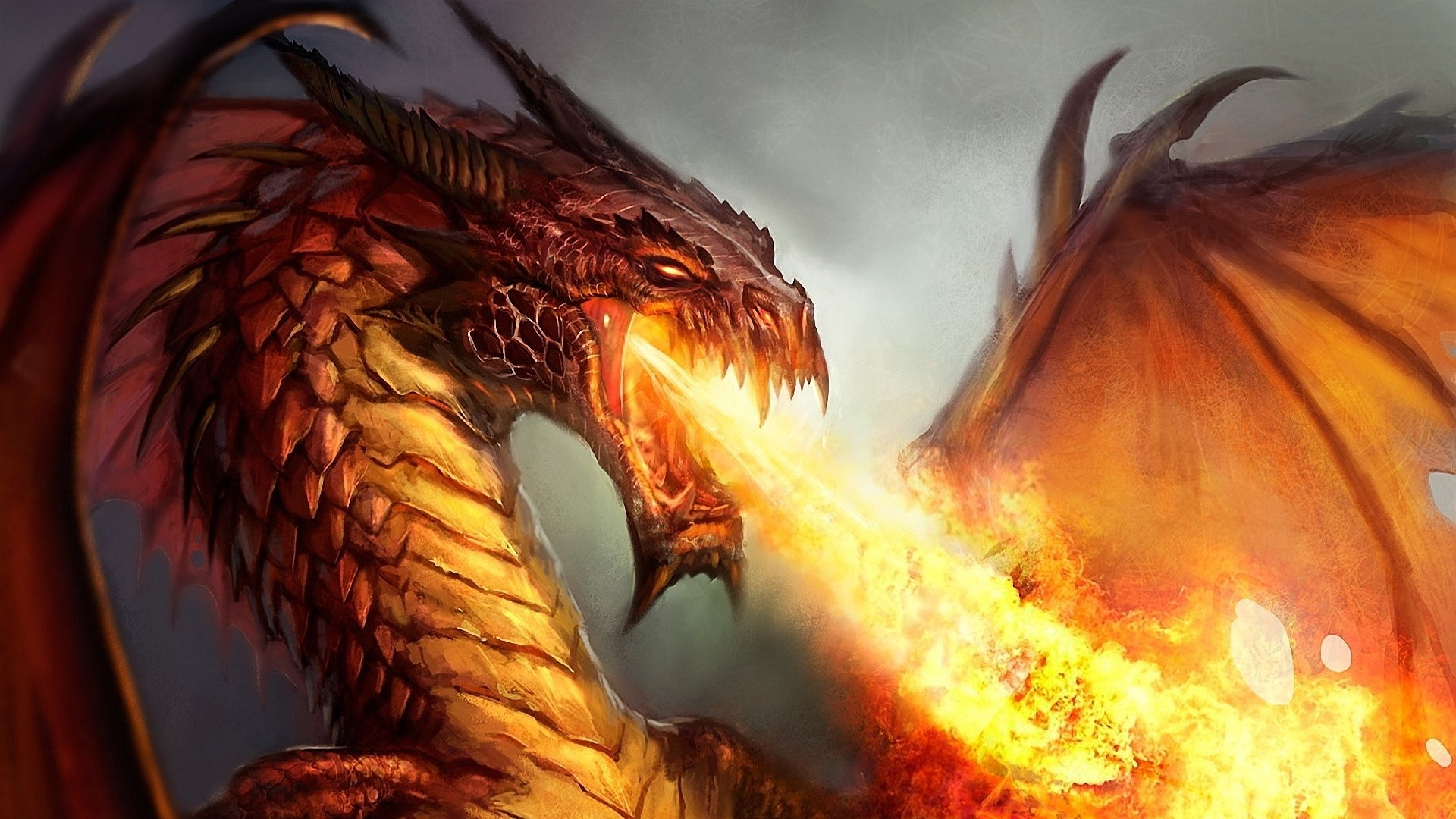 Backgrounds In High Quality: Dragon by Angle Sprowl, 05/03/2015
