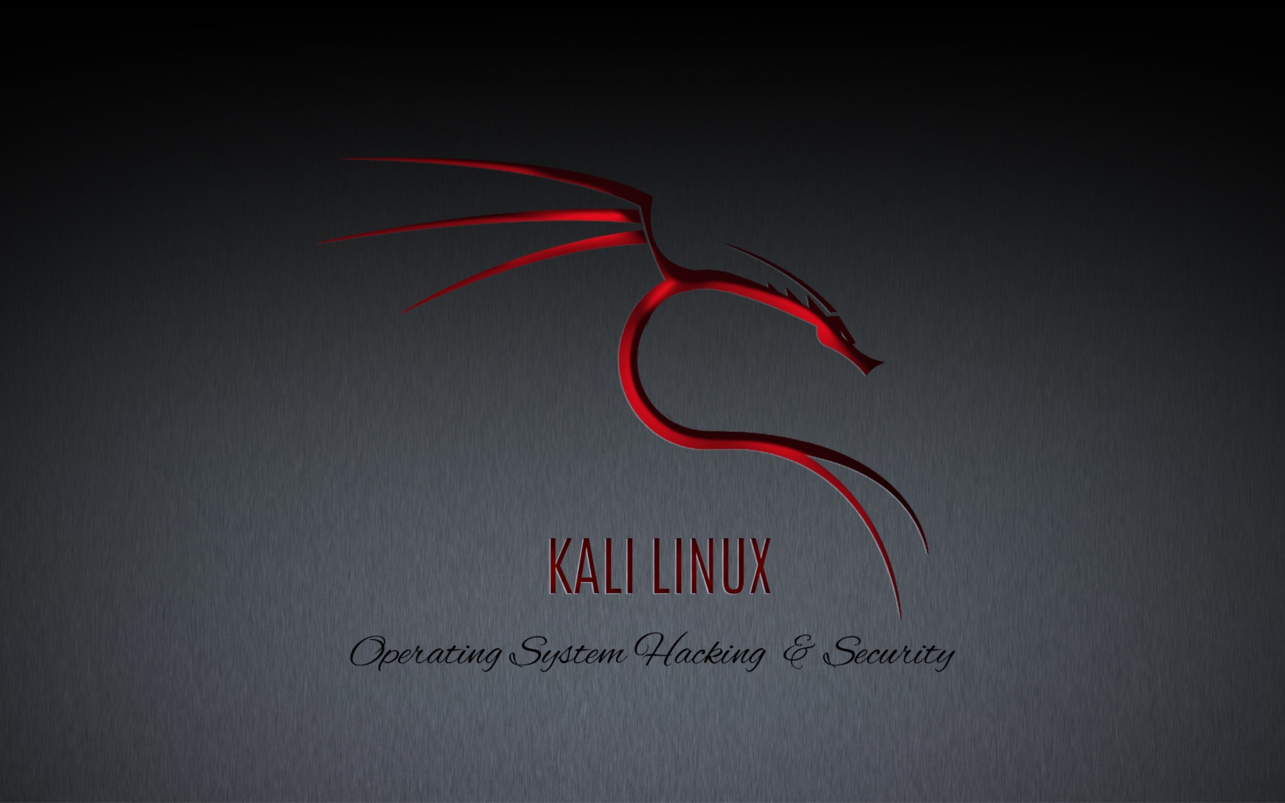 kali linux   HDwallpaperUP