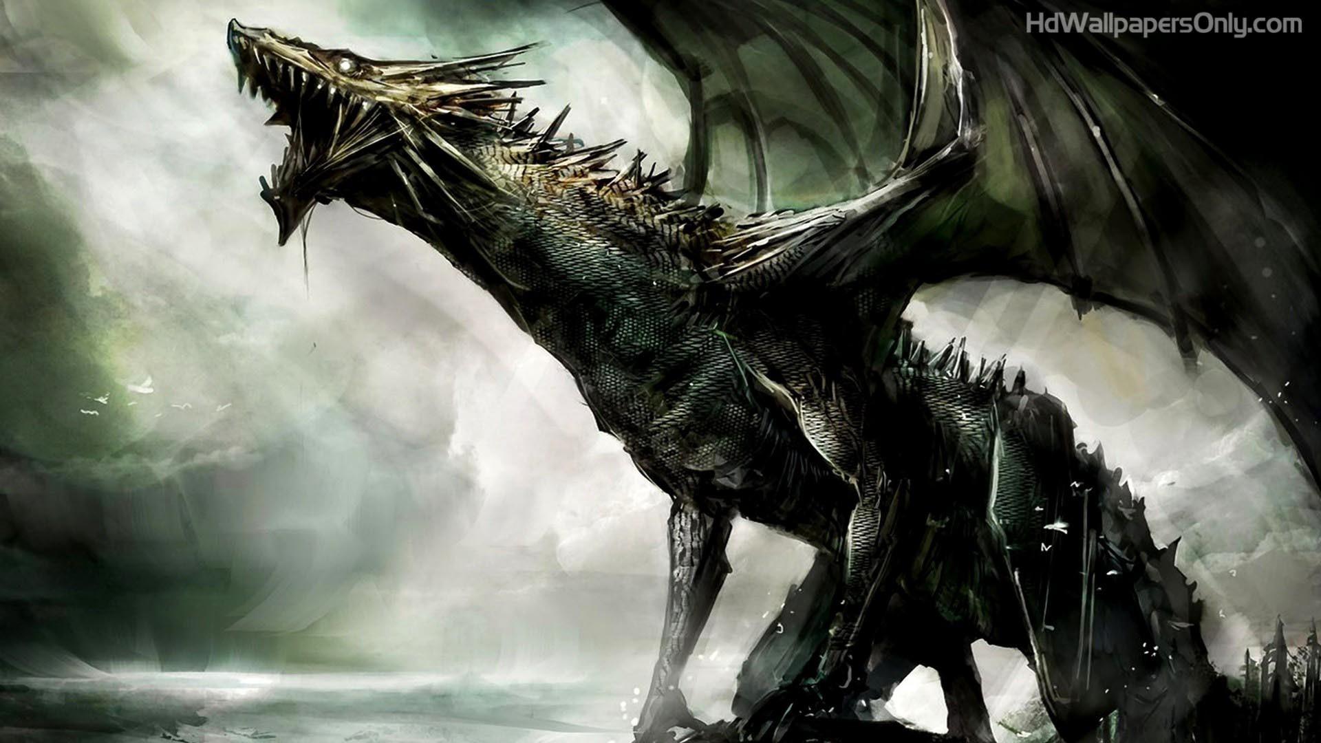 Black Dragon HD Wallpaper   4hotos