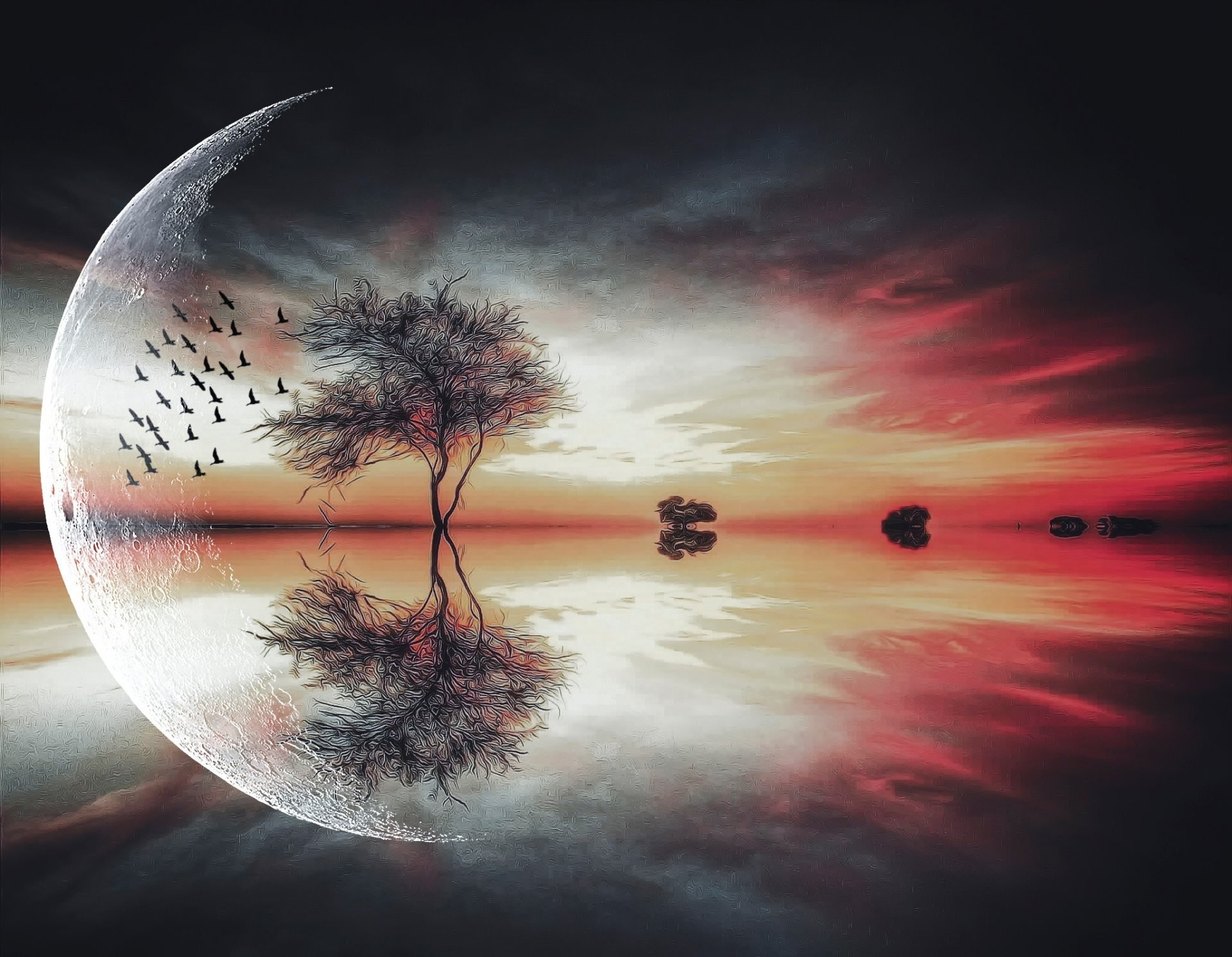 fantasy moon tree birds