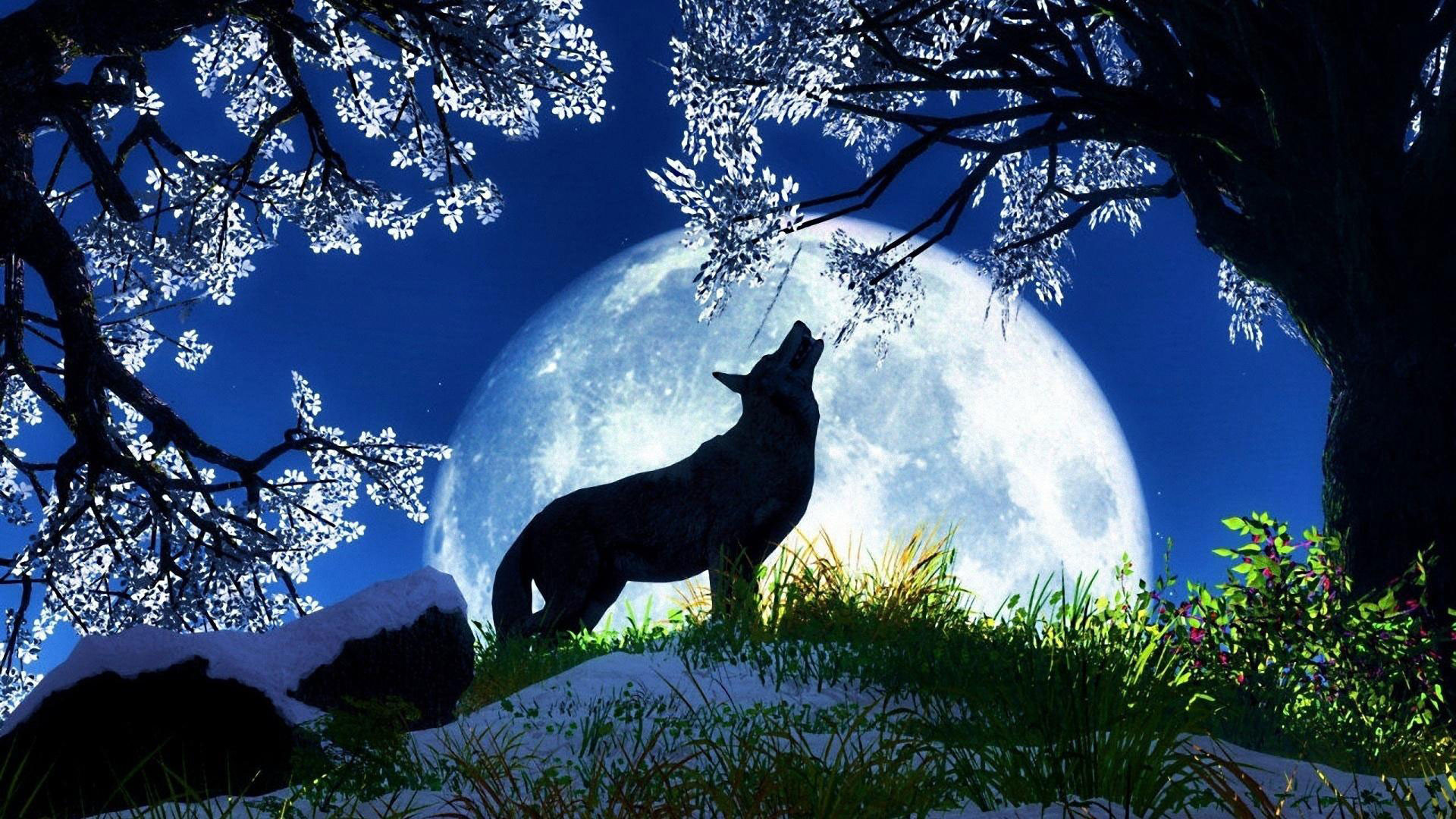 hd pics photos stunning howling wolf fantasy moon animated hd quality desktop  background wallpaper