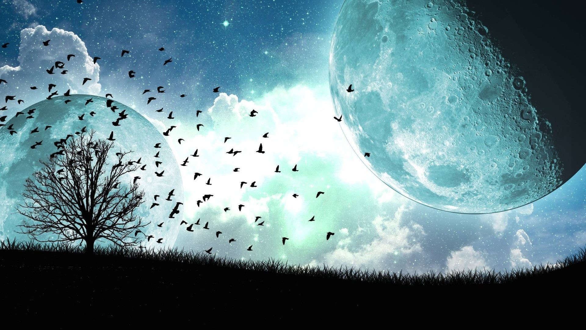 Fantasy Tag – Dream Vector Moon Birds Sci Fantasy Sky Nature Wallpaper  Latest Download for HD