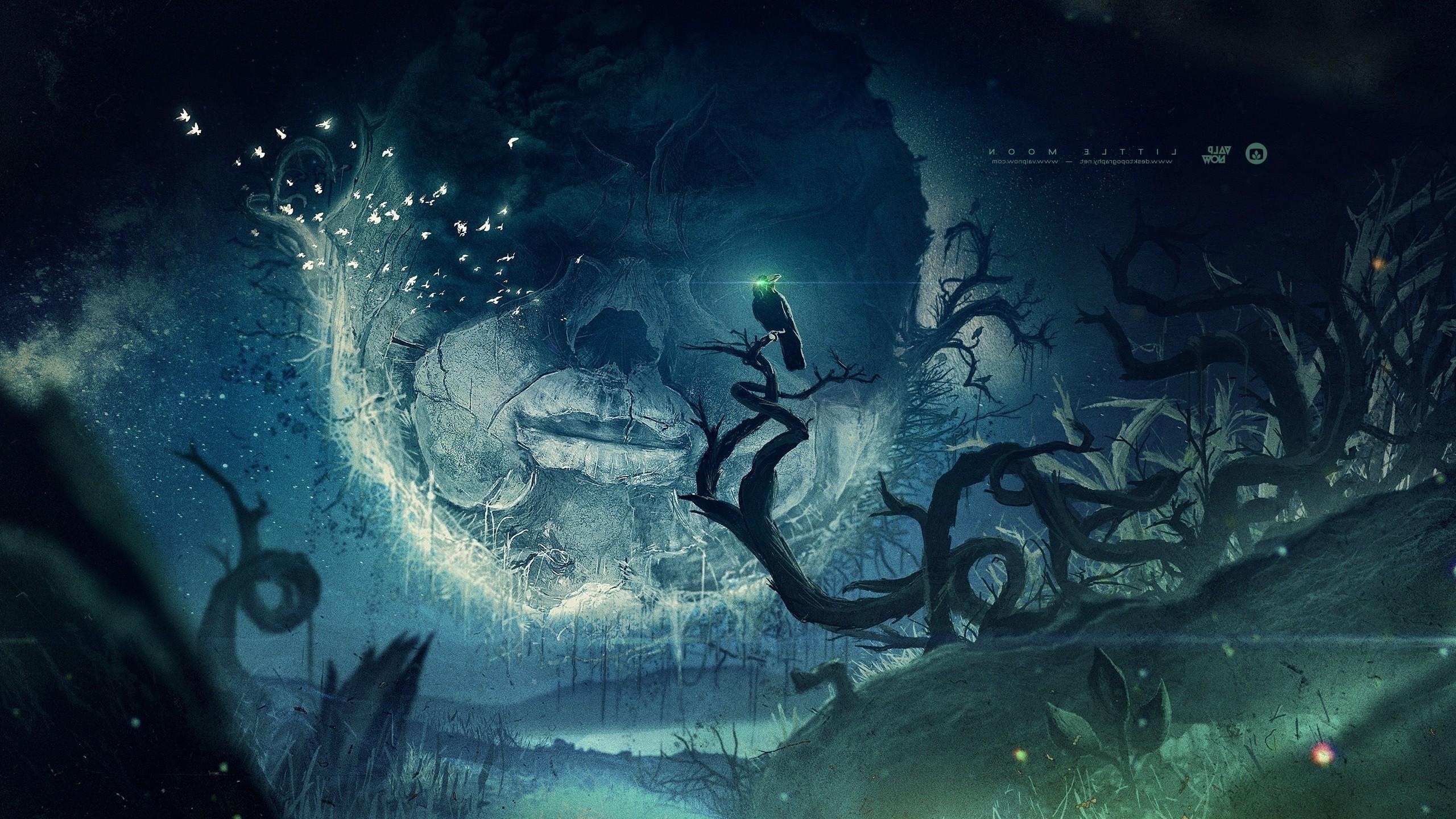 Desktopography, Raven, Face, Pigeons, Fantasy Art, Mist, Moon, Valpnow  Wallpapers HD / Desktop and Mobile Backgrounds