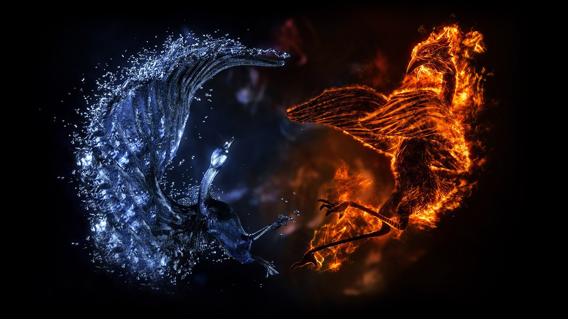 Battle of fire and water dragons wallpapers and images .
