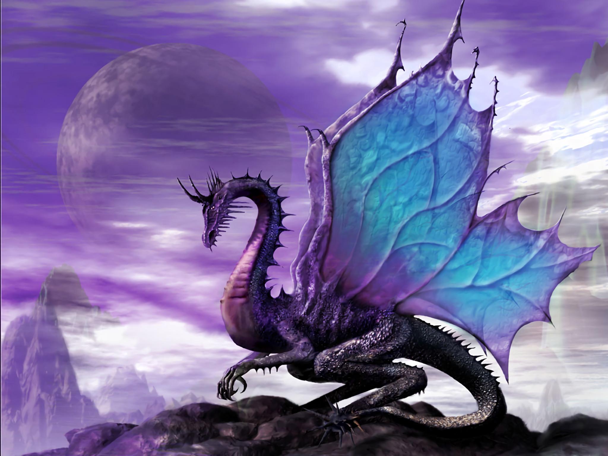 HD Wallpaper | Background ID:14065. Fantasy Dragon