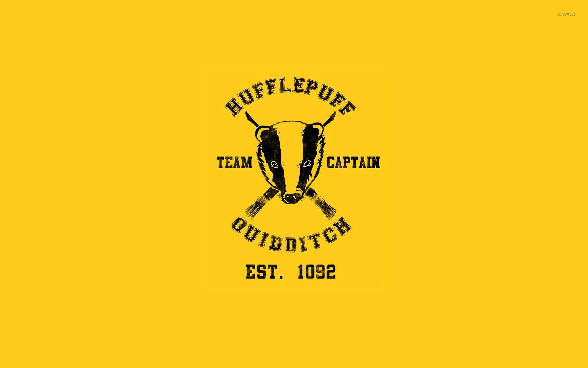Hufflepuff Quidditch team – Harry Potter wallpaper
