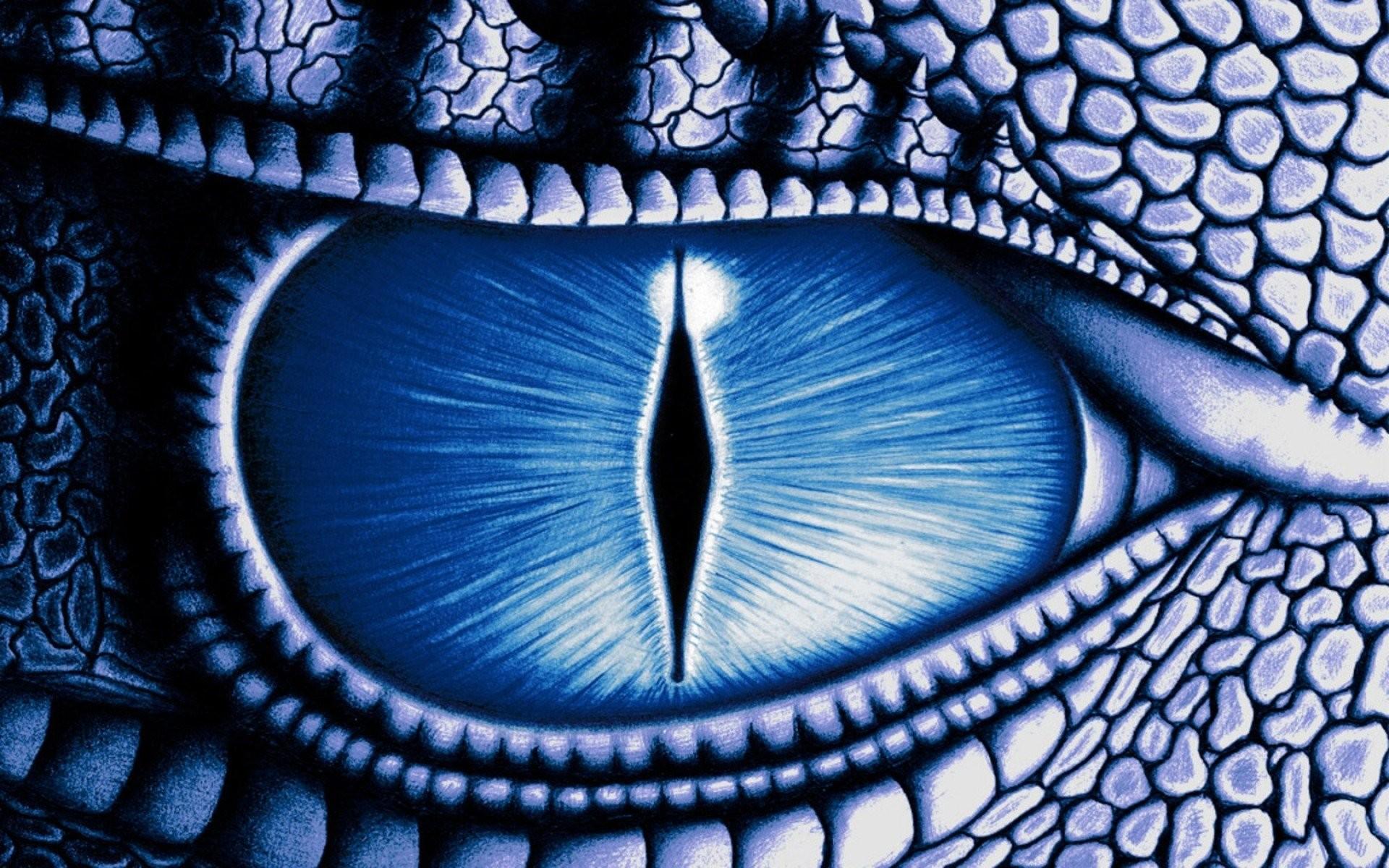 Dragon Eye 938035 …