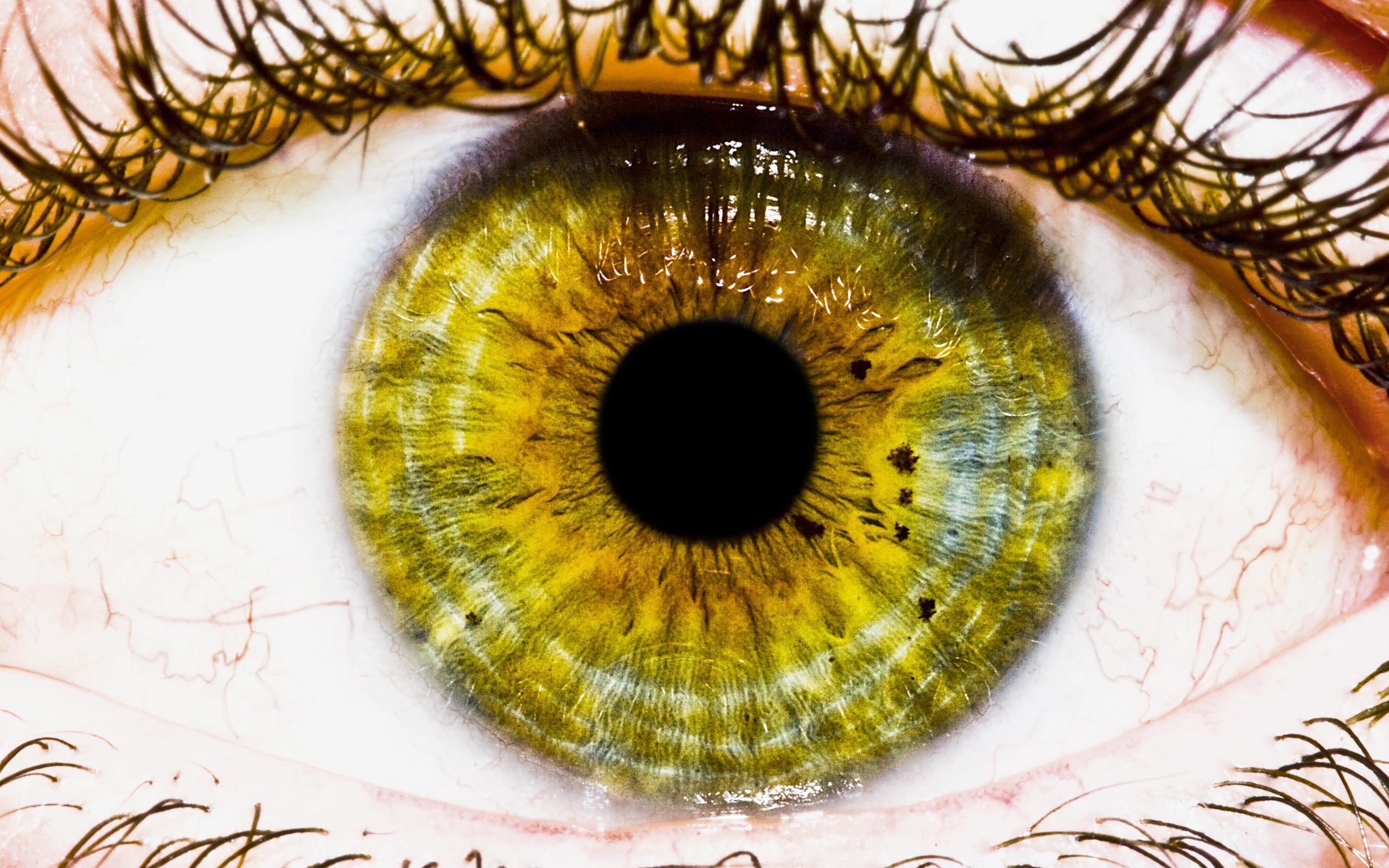 creative eye wallpaper