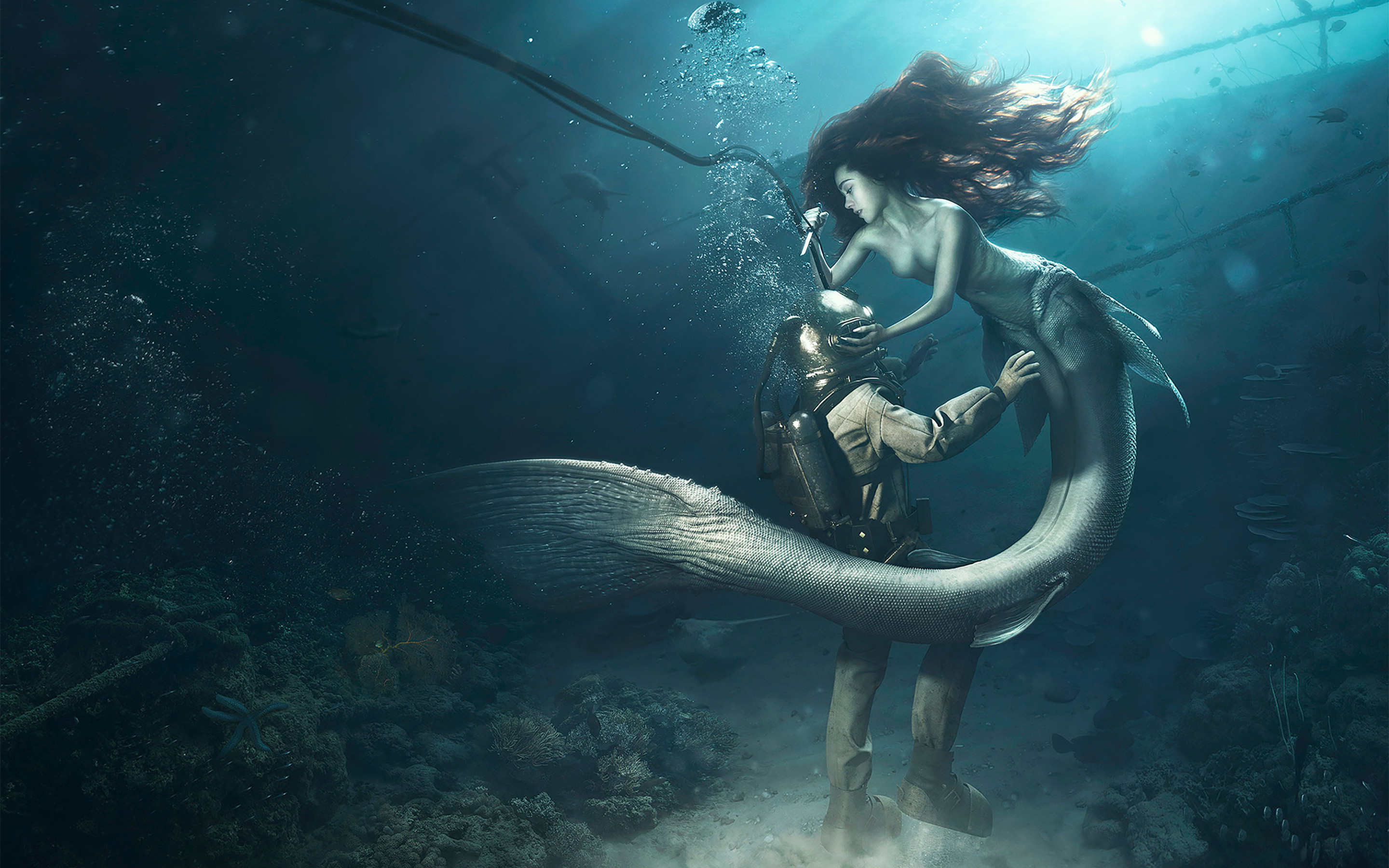 Diver and the Mermaid Wallpapers   HD Wallpapers
