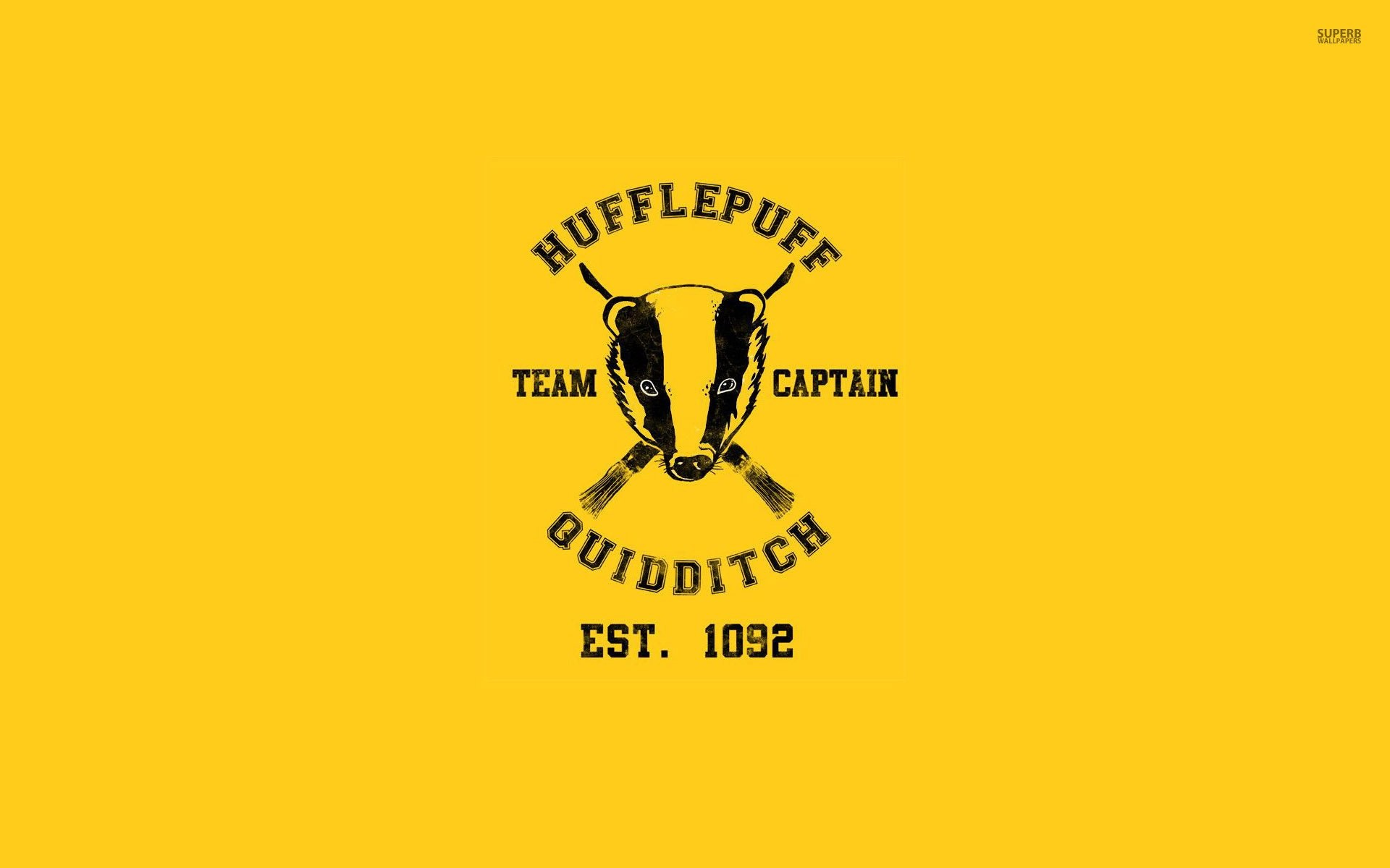 Hufflepuff Quidditch Team – Harry Potter