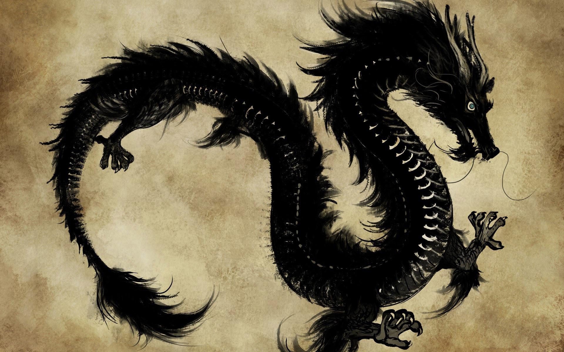 Chinese dragon totem iPad Wallpaper Download   iPhone Wallpapers   Adorable  Wallpapers   Pinterest   Chinese dragon, Dragons and Wallpaper