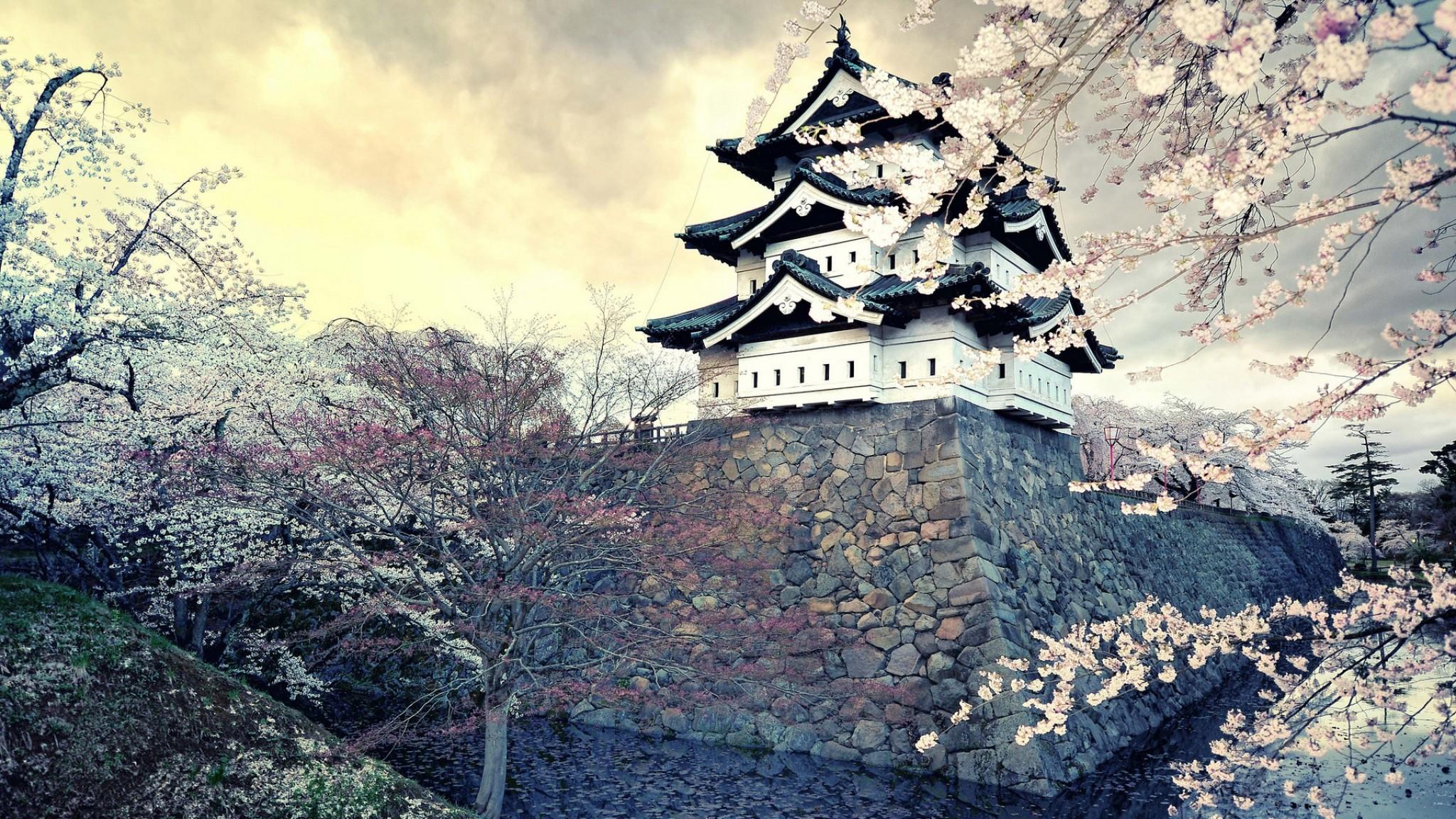 Preview wallpaper city, sakura, japan, spring 2048×1152