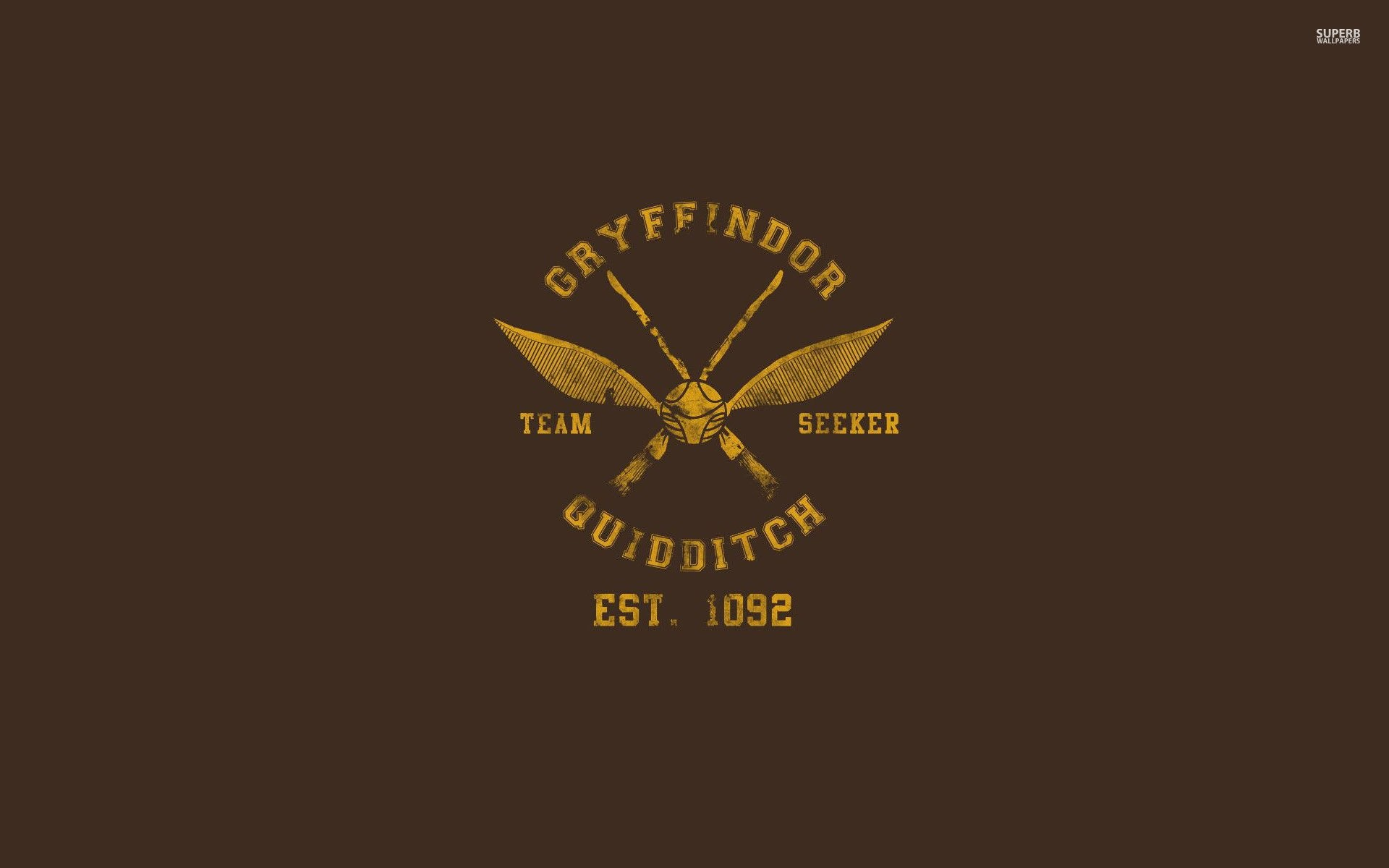 Gryffindor Quidditch Team …
