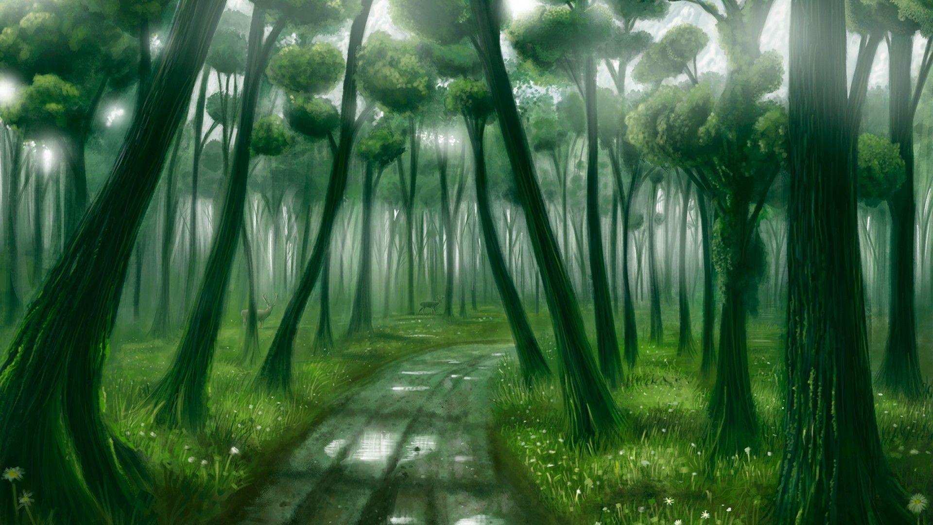 Fantasy Forest art Wallpaper[1920 × 1080] …