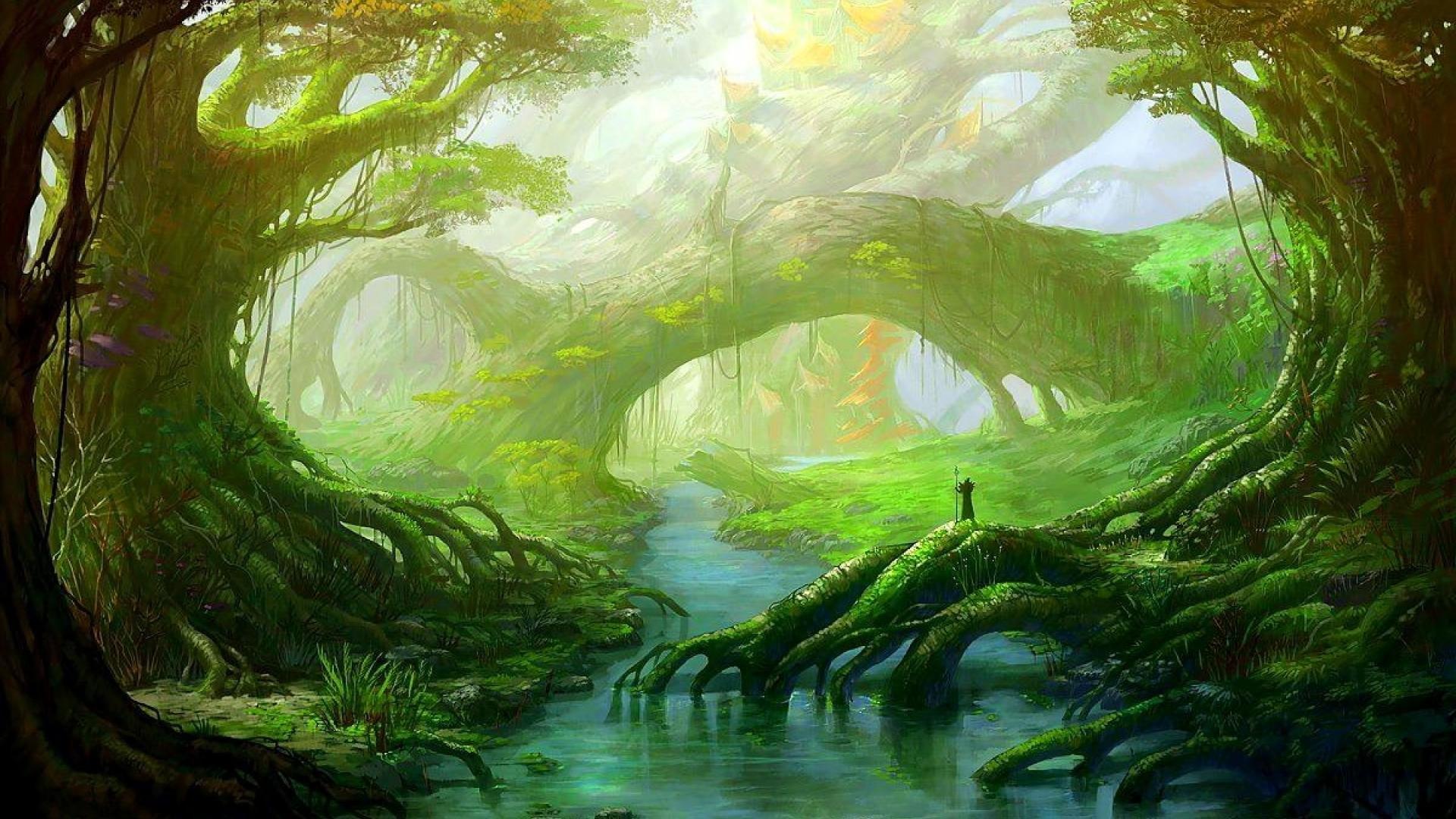 Fantasy Forest Wallpaper HD Resolution