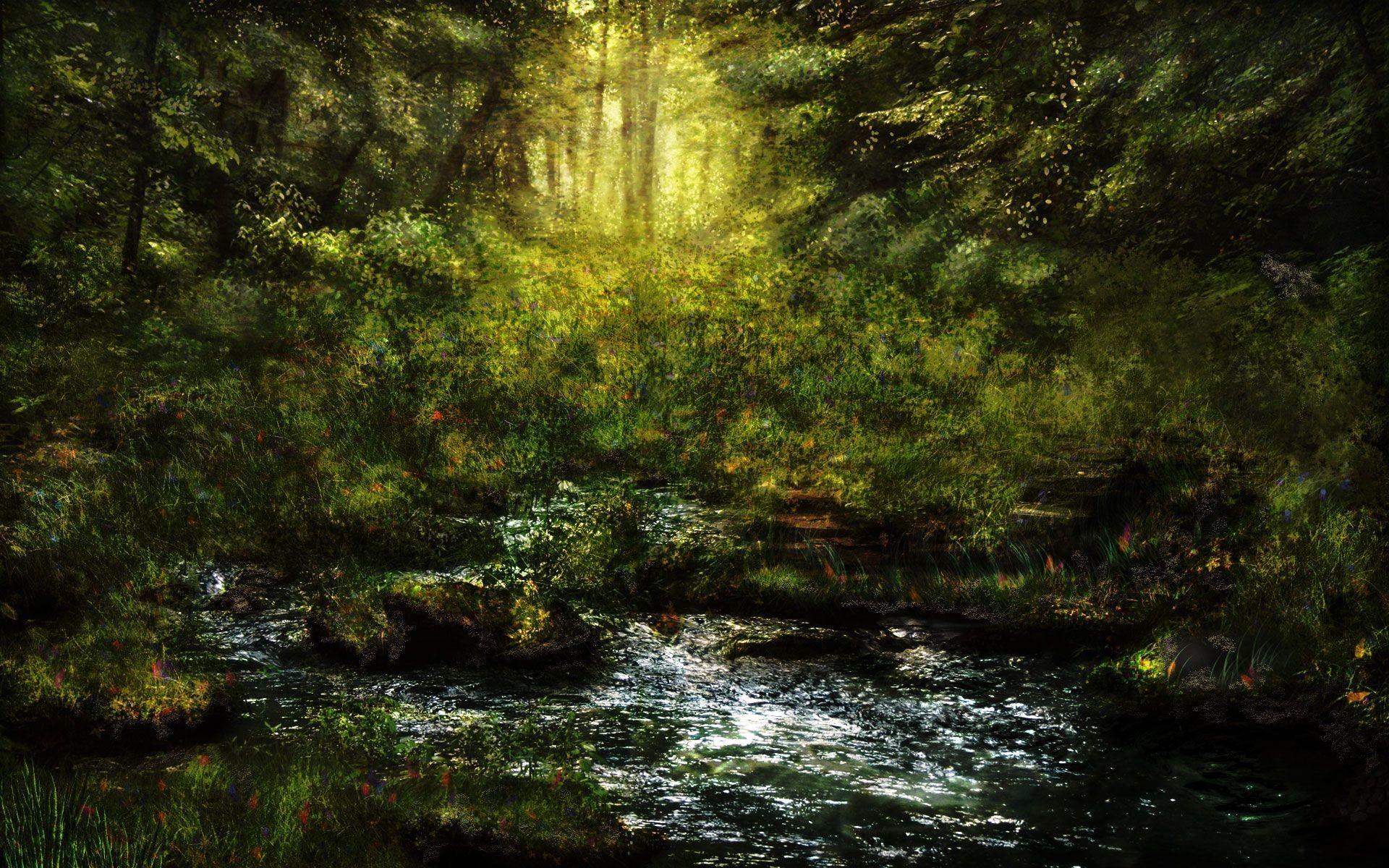 Fantasy Forest wallpaper 158541