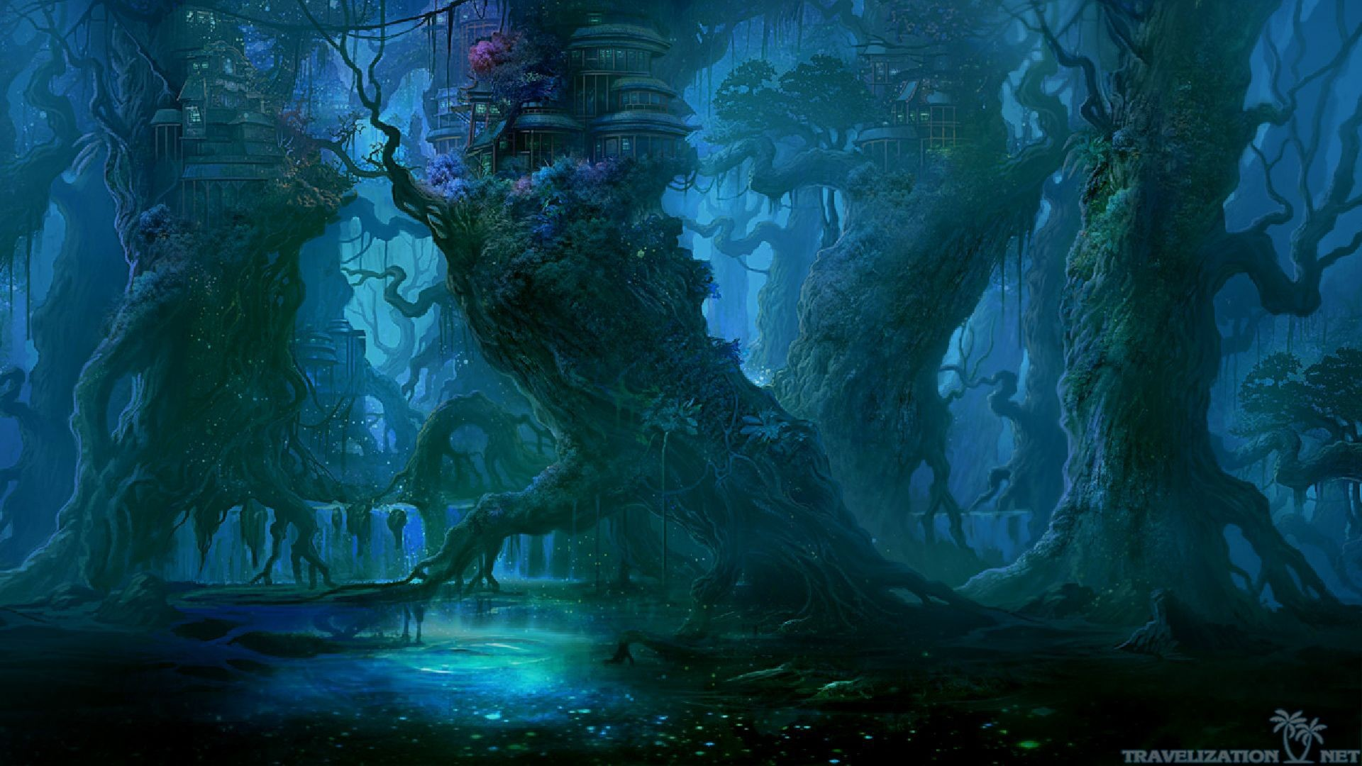 … 2560×1920. Blue Night Dark Forest Wallpapers