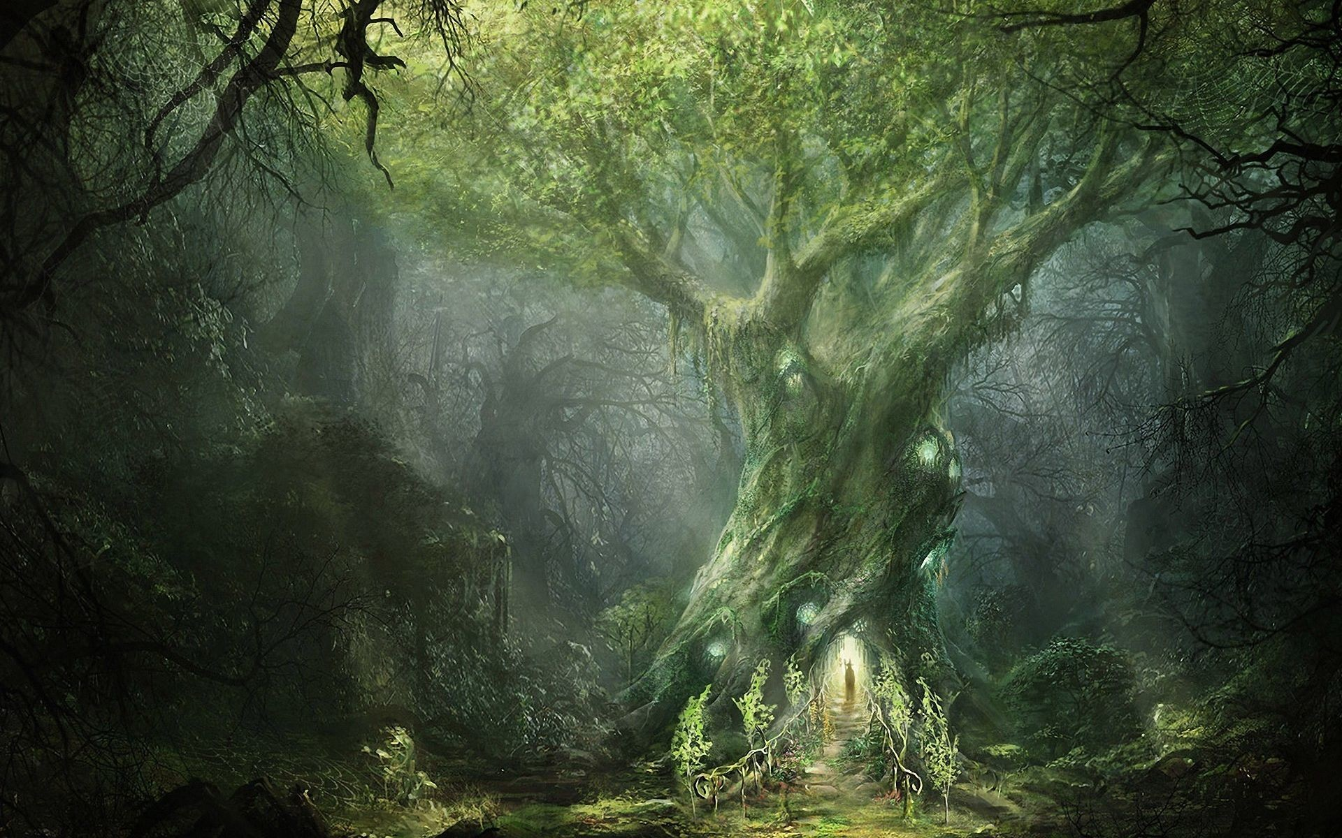 Fantasy Forest big twisted tree with surrounding light |  TomorrowlandInspAration | Pinterest | Fantasy forest, Wallpaper backgrounds  and Wallpaper