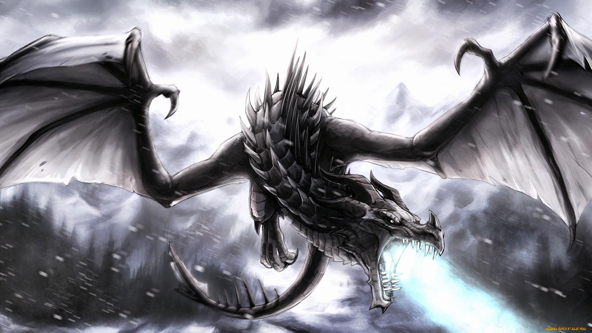 Black-Dragon ! Computer Wallpapers, Desktop Backgrounds | .
