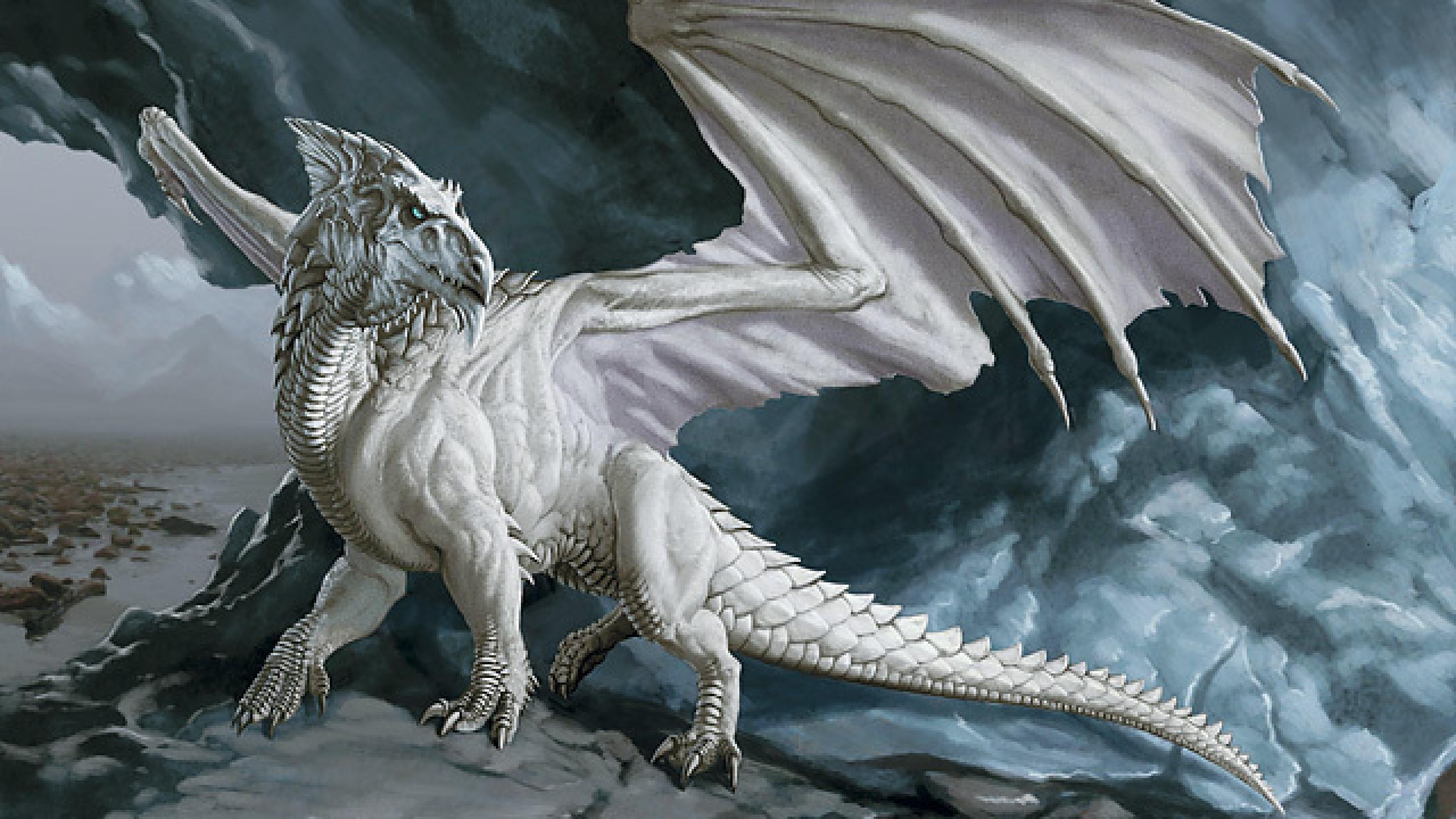 White Dragon Wallpaper – Wallpaper HD Base