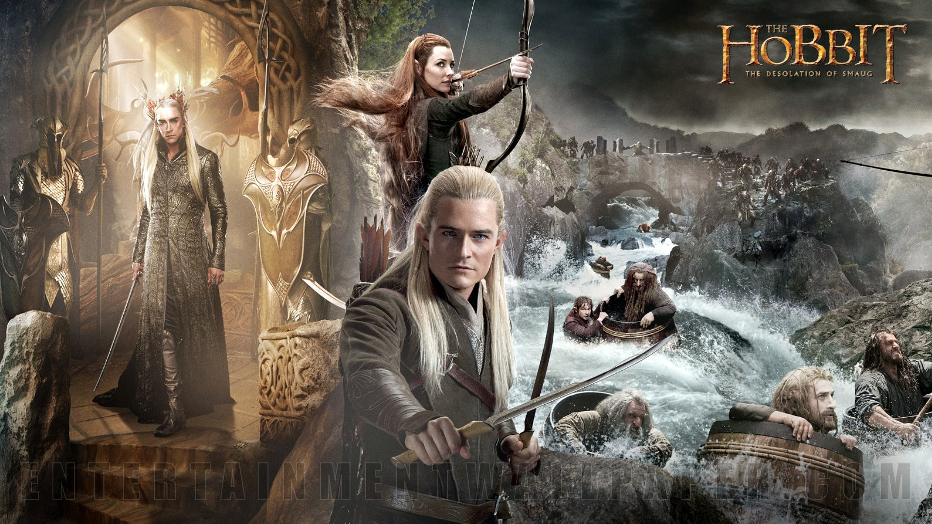 Hobbit Desolation Of Smaug Wallpapers (6 Wallpapers)
