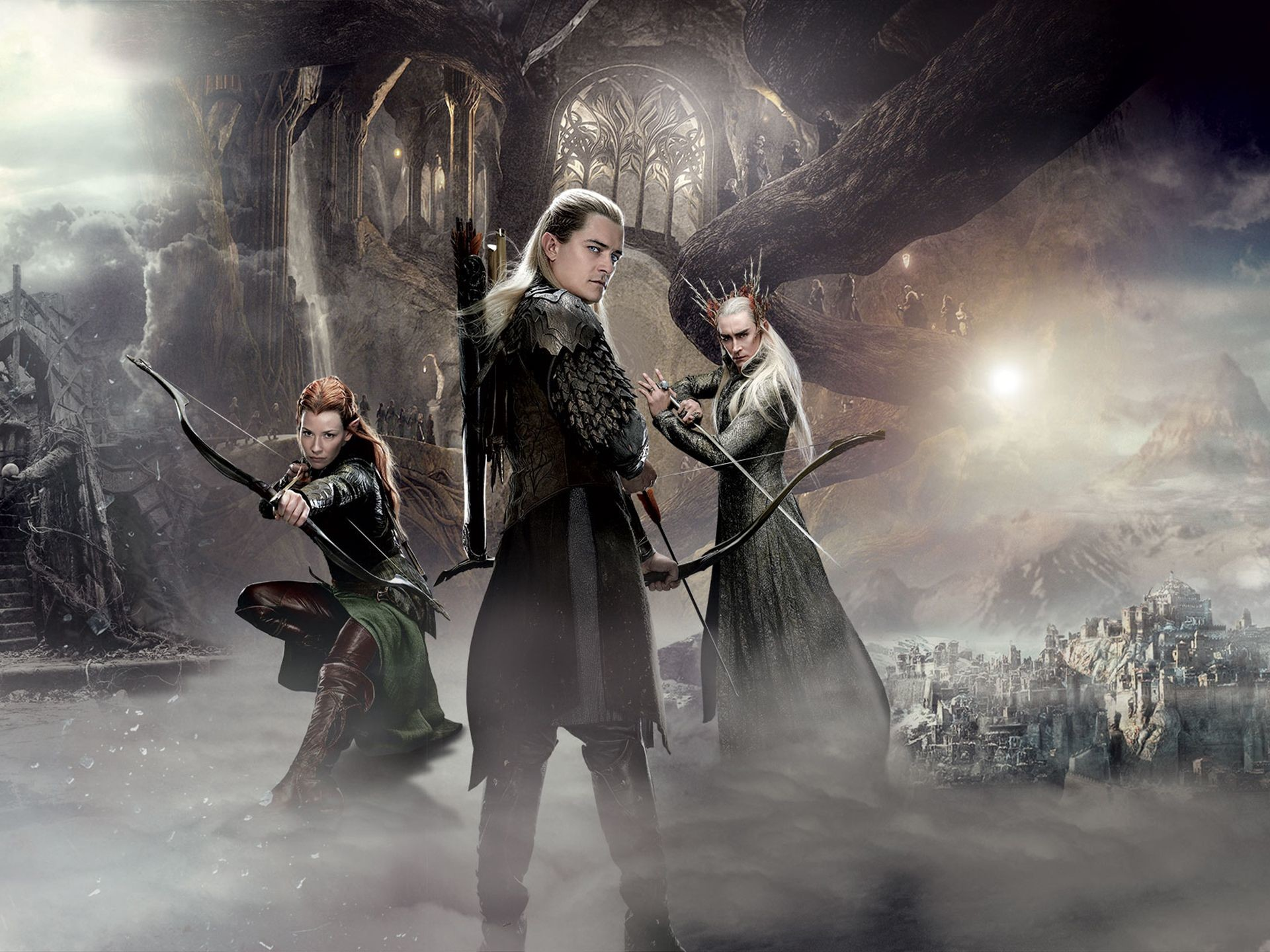 The Hobbit – The Desolation of Smaug (6)