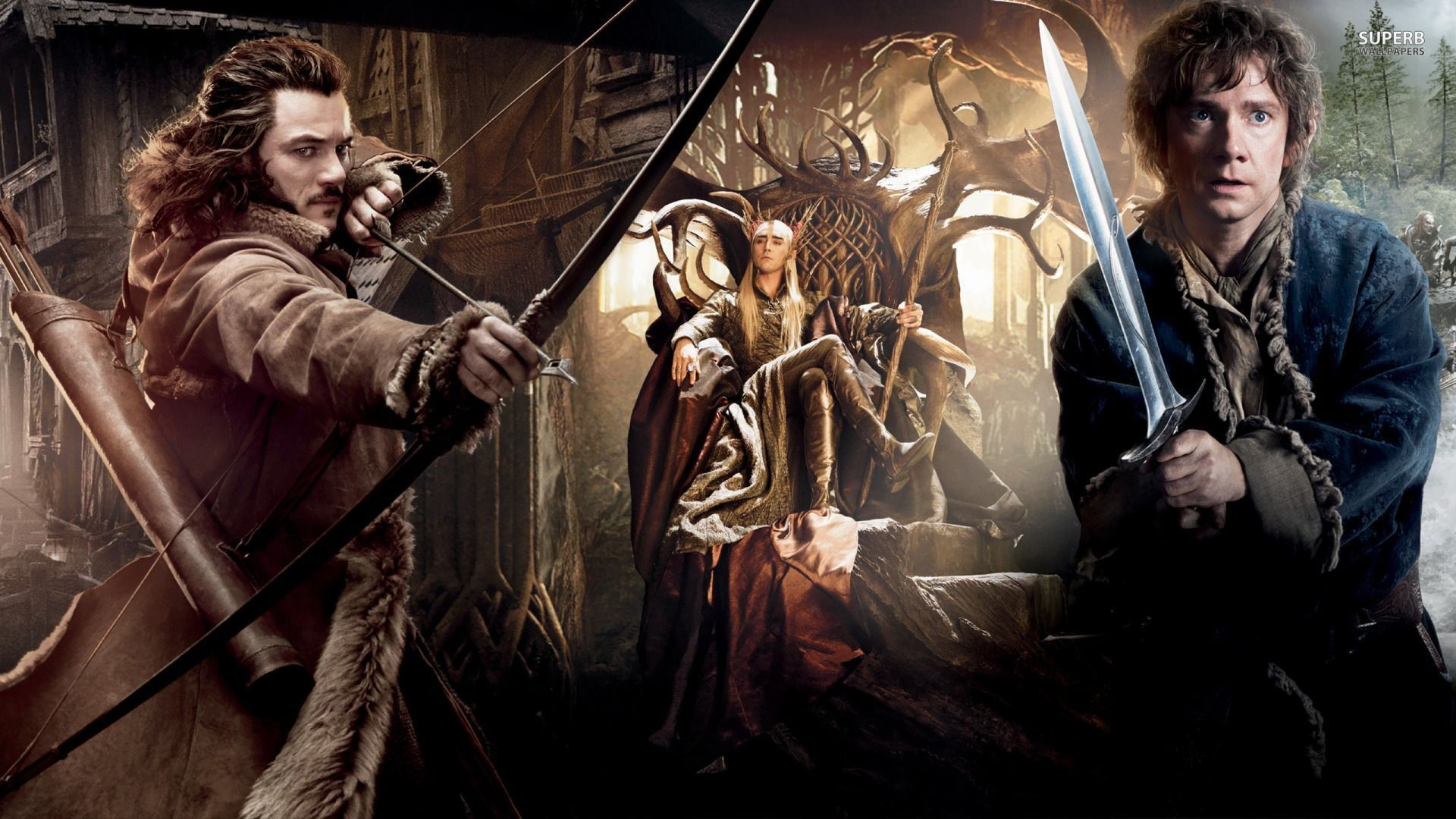 The Hobbit: The Desolation of Smaug wallpaper – Movie wallpapers .