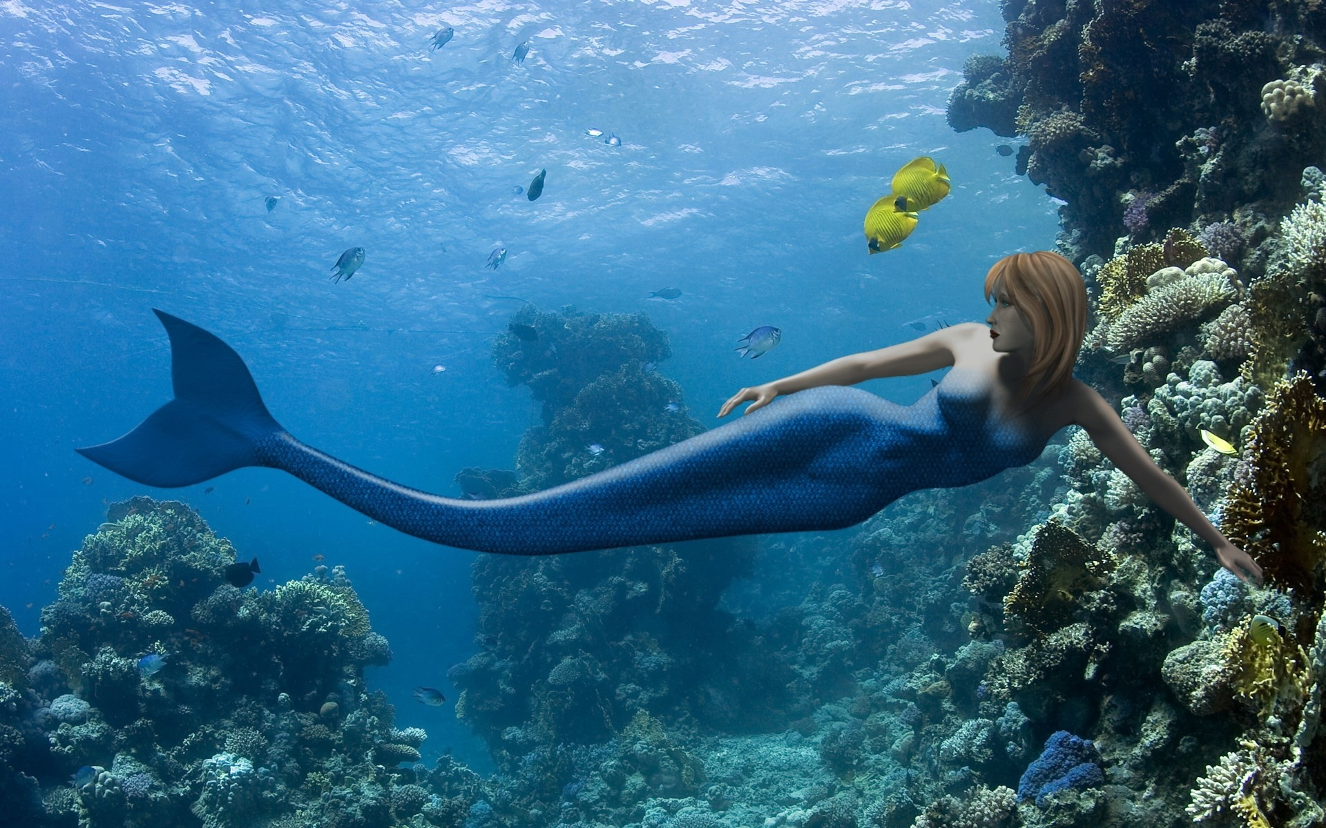 mermaid picture for desktop hd, 1920 x 1200 (1839 kB)
