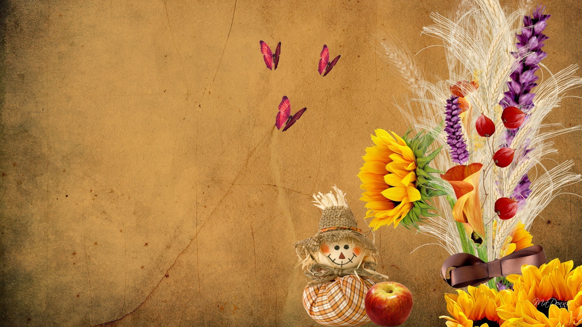 Seeds Tag – Tan Paper Sunflower Autumn Bow Parchment Ribbon Doll Apple  Wheat Seeds Fall Scare