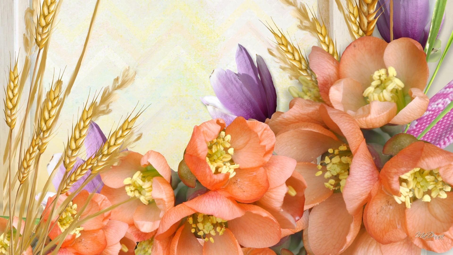 Grains Tag – Miracle Nature Flowers Autumn Peach Grass Lavender Wheat  Summer Fall Orange Oats Soft