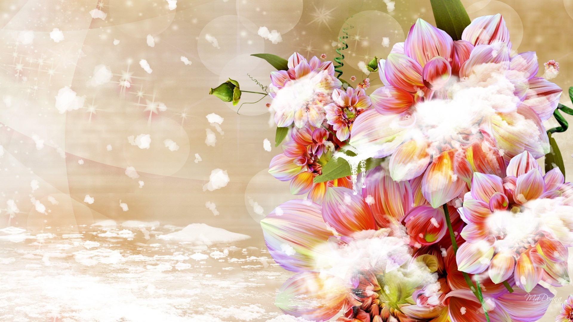 Snowing Flowers Autumn Cold Pink Fall Fleurs Snow Dahlia Winter Icicle Ice Flower  Wallpaper Pictures