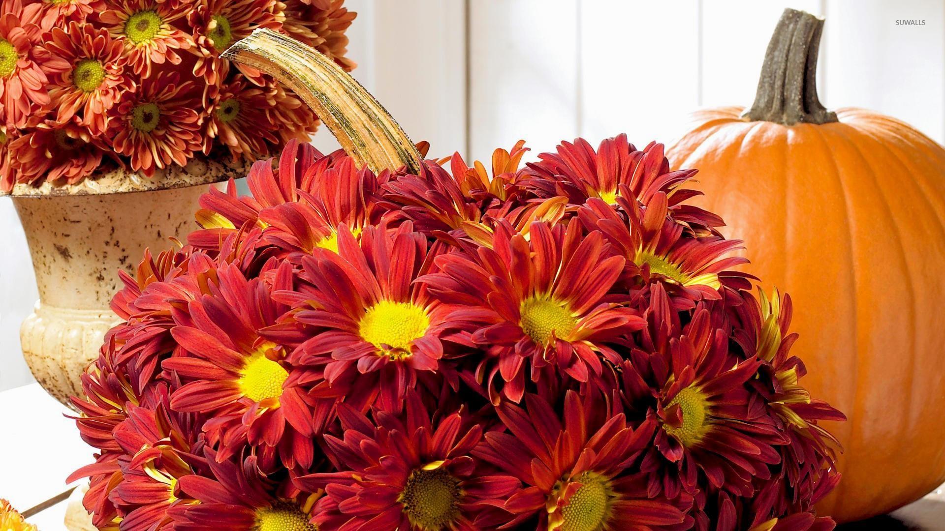 6. mum-flower-wallpaper6-600×338