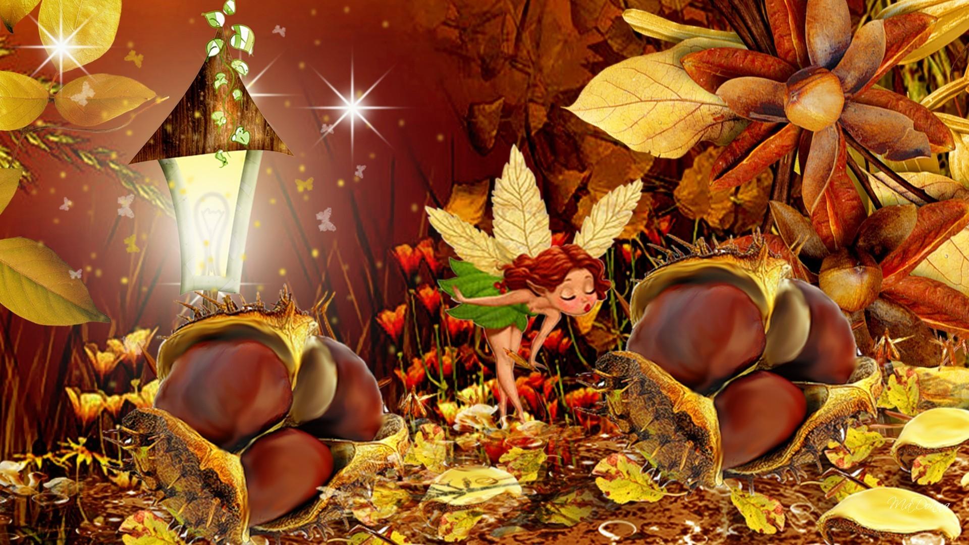 January 6, 2017 – Chestnuts Light Fairy Fall Fantasy Flowers Stars Fancy  Leaves Autumn Nature