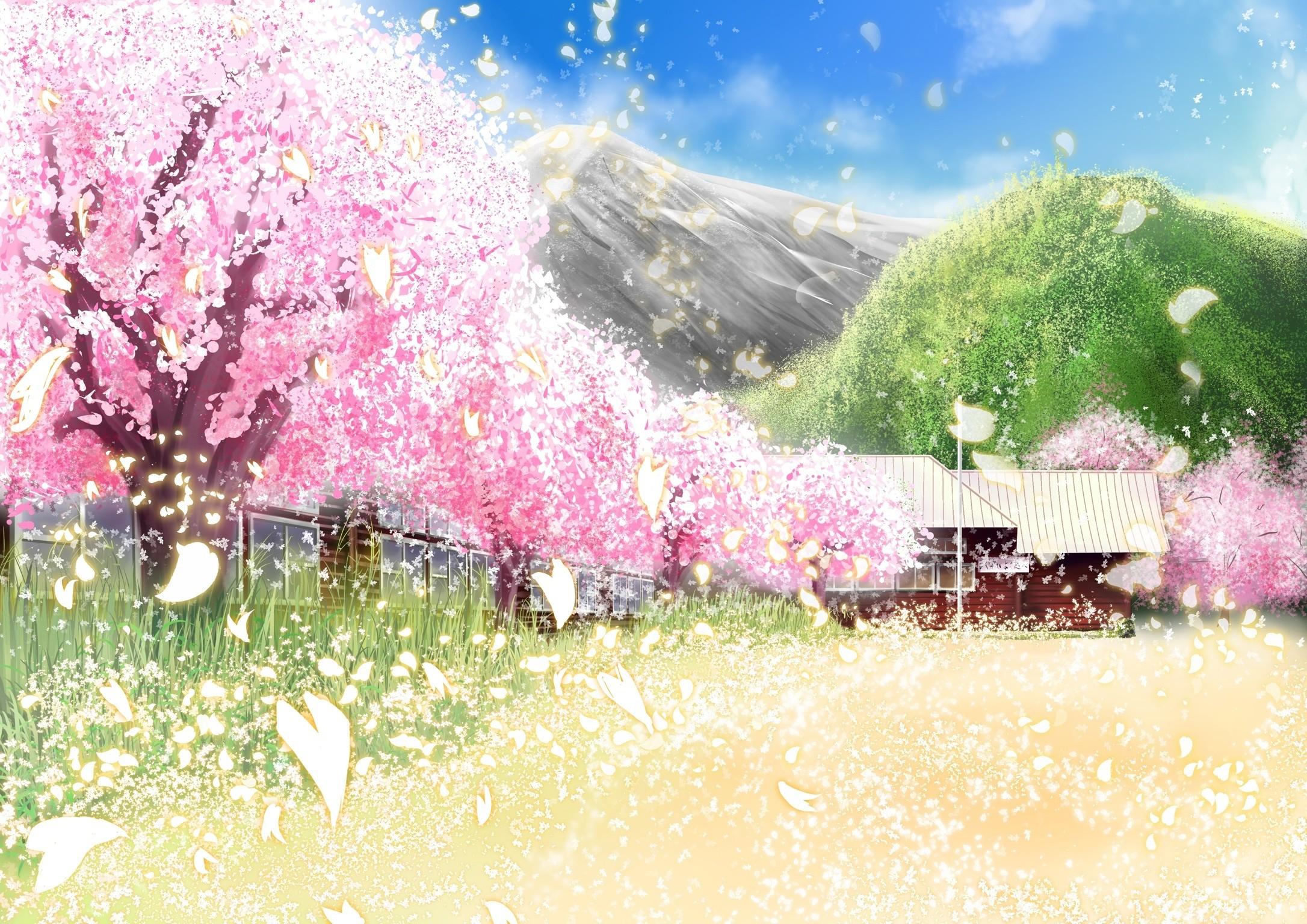 Original building cherry blossoms grass landscape original petals scenic  sylphidehachioji tree wallpaper | | 97737 | WallpaperUP