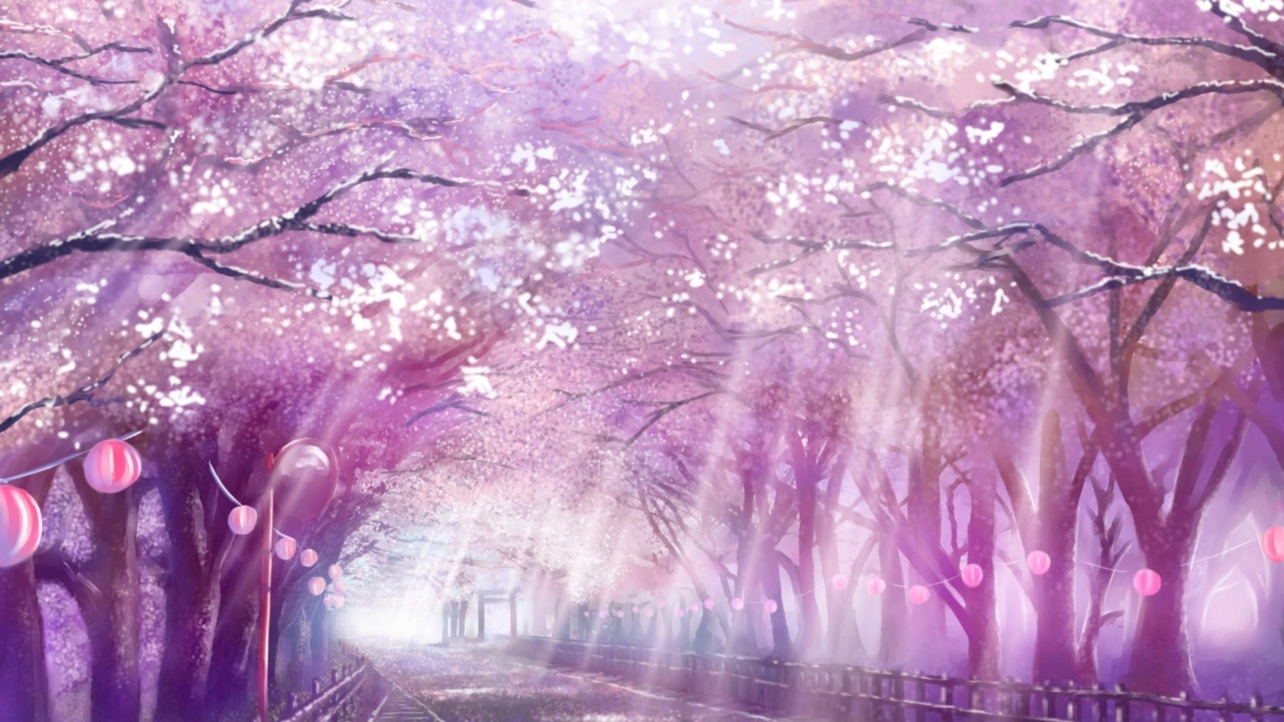 Anime Landscape, Scenic, Sakura Blossom, Cherry, Path, Sunlight
