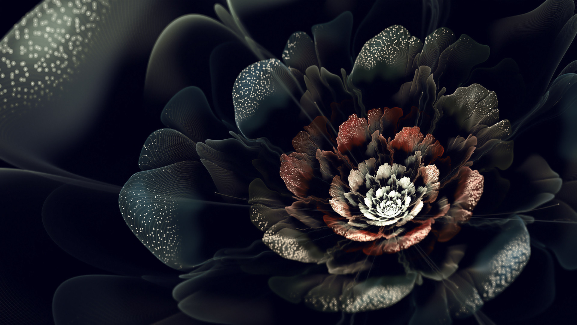 Black Roses Wallpapers & Pictures : Find best latest Black Roses Wallpapers  & Pictures in HD for your PC desktop background and mobile phones.