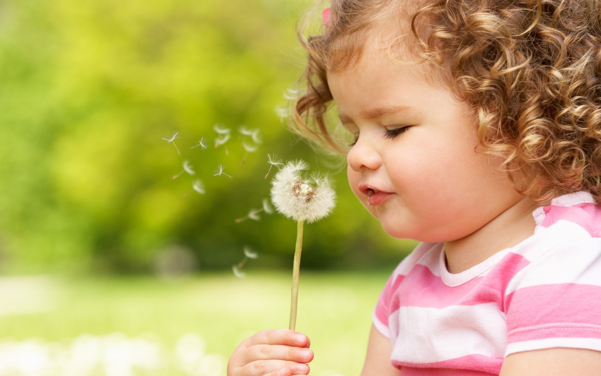 A Curly Child Blowing a Dandelion