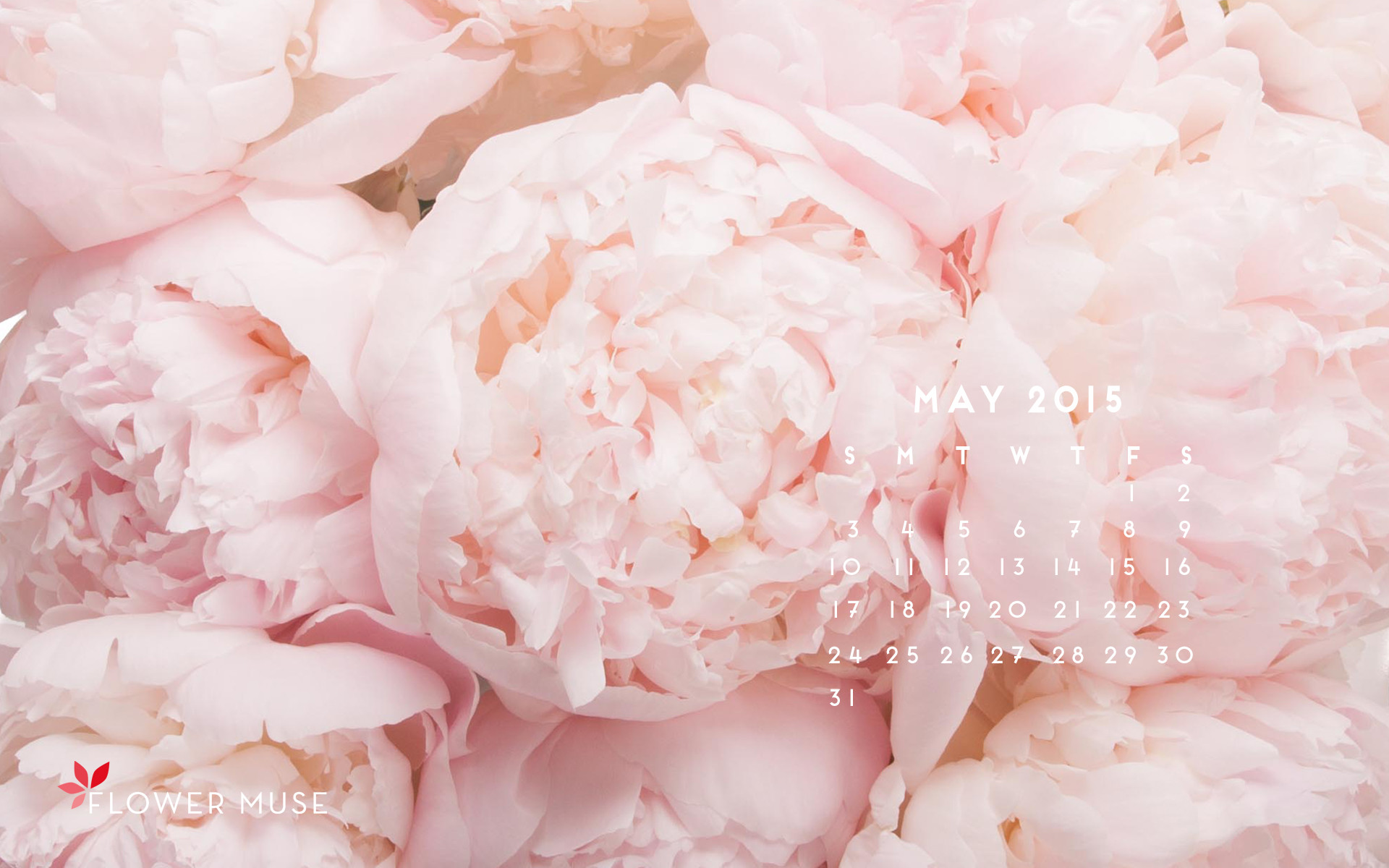 Behind the Scenes at a Peony Farm May 2015 Calendar