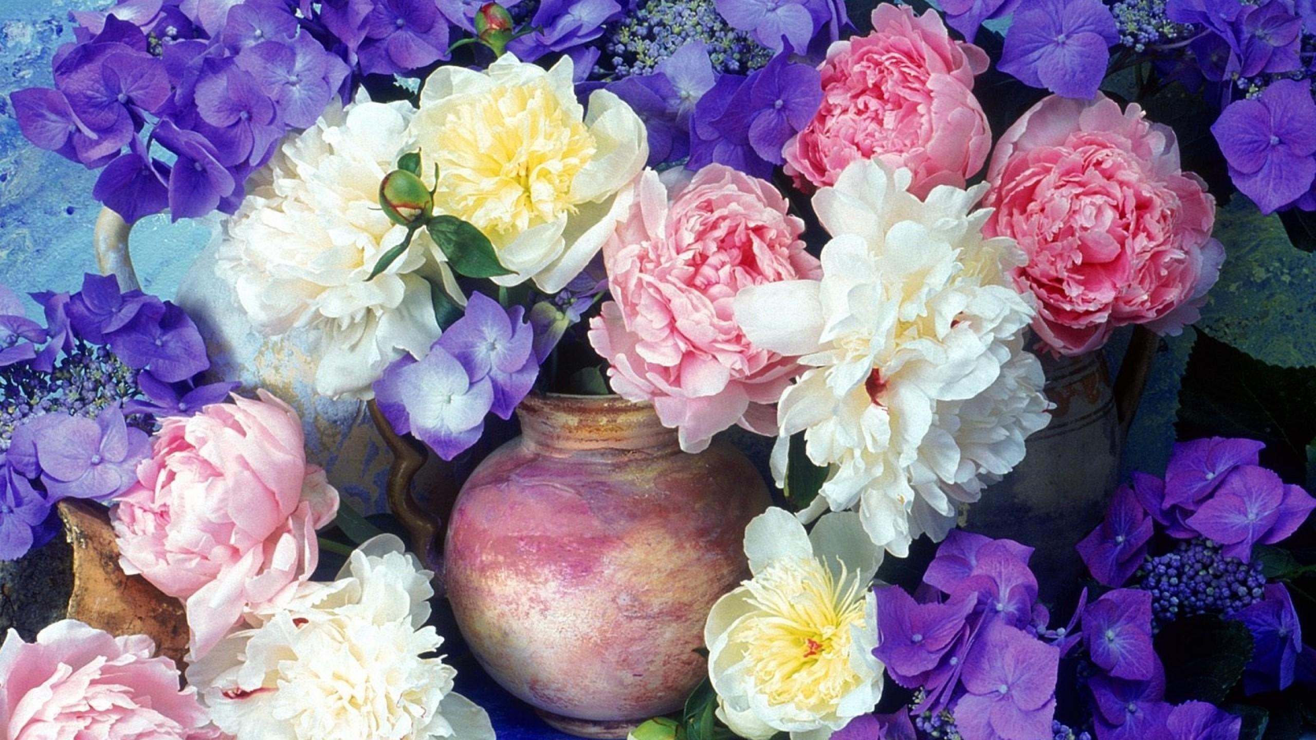 Preview wallpaper peonies, hydrangea, flowers, painting, jugs, flower,  beauty 2560×1440