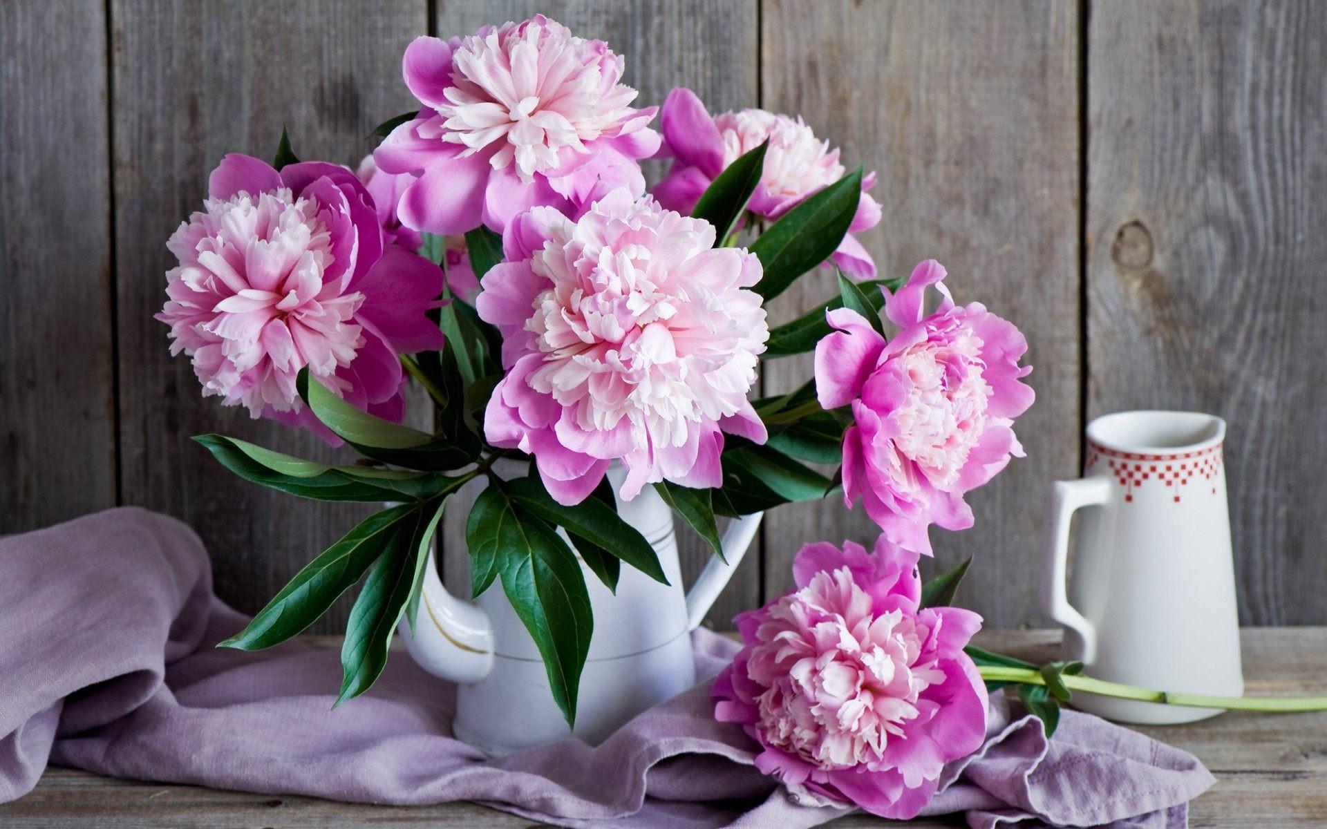 Peony Flower Bouquet Wallpaper