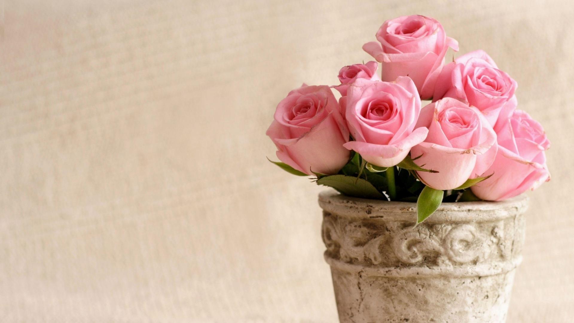 7. peonies-flower-wallpaper7-600×338